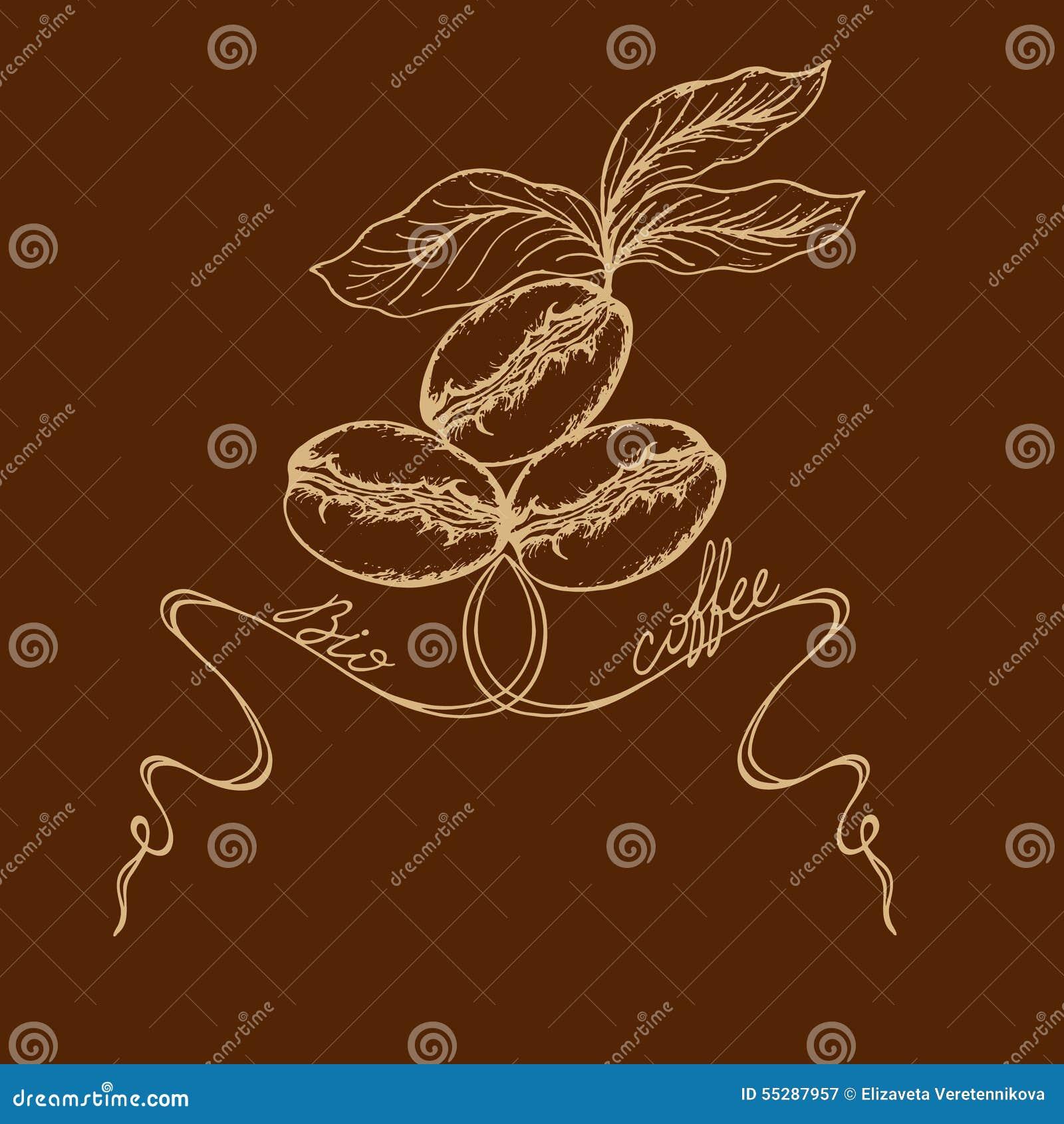 与咖啡叶子和生物咖啡题字的被绘的咖啡豆.图片