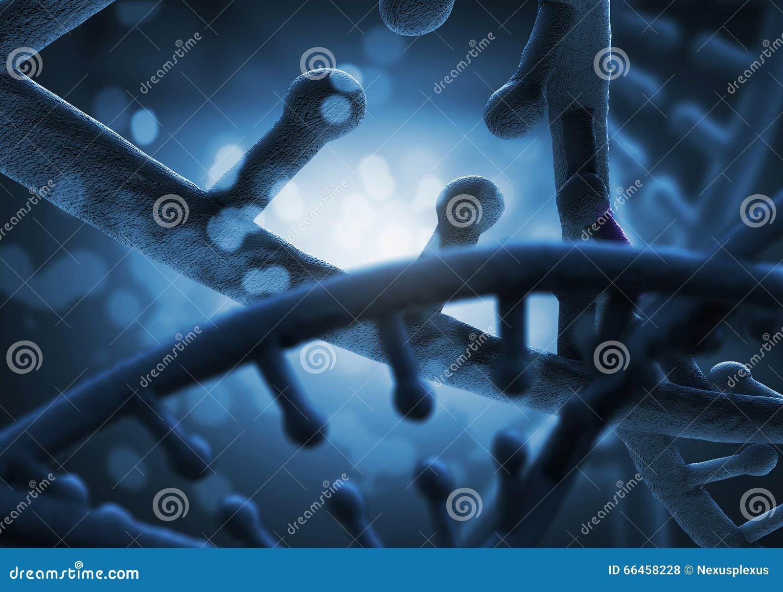 生物工艺学基因研究