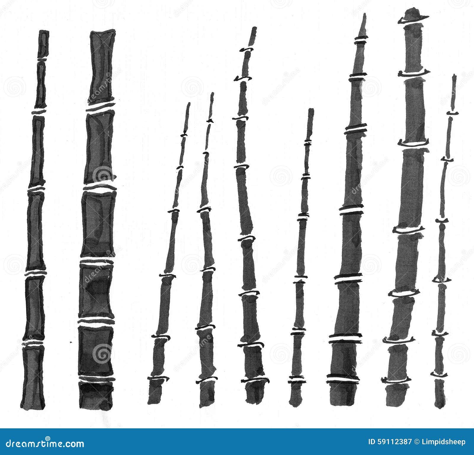 生长许多的竹快速草类似于词根使用的事情结构树非常