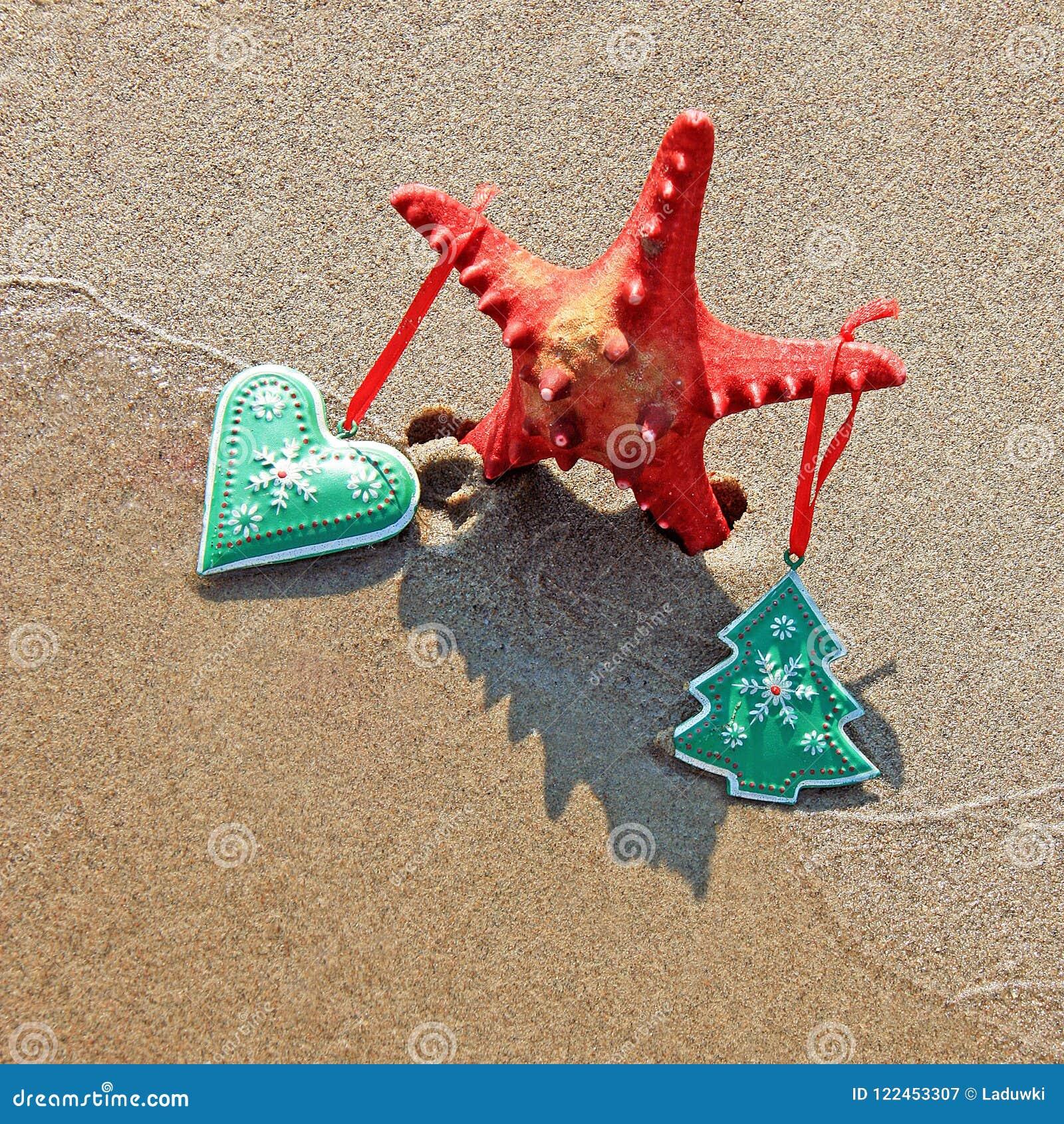 用圣诞节装饰的海星戏弄与阴影当在海滩的圣诞树