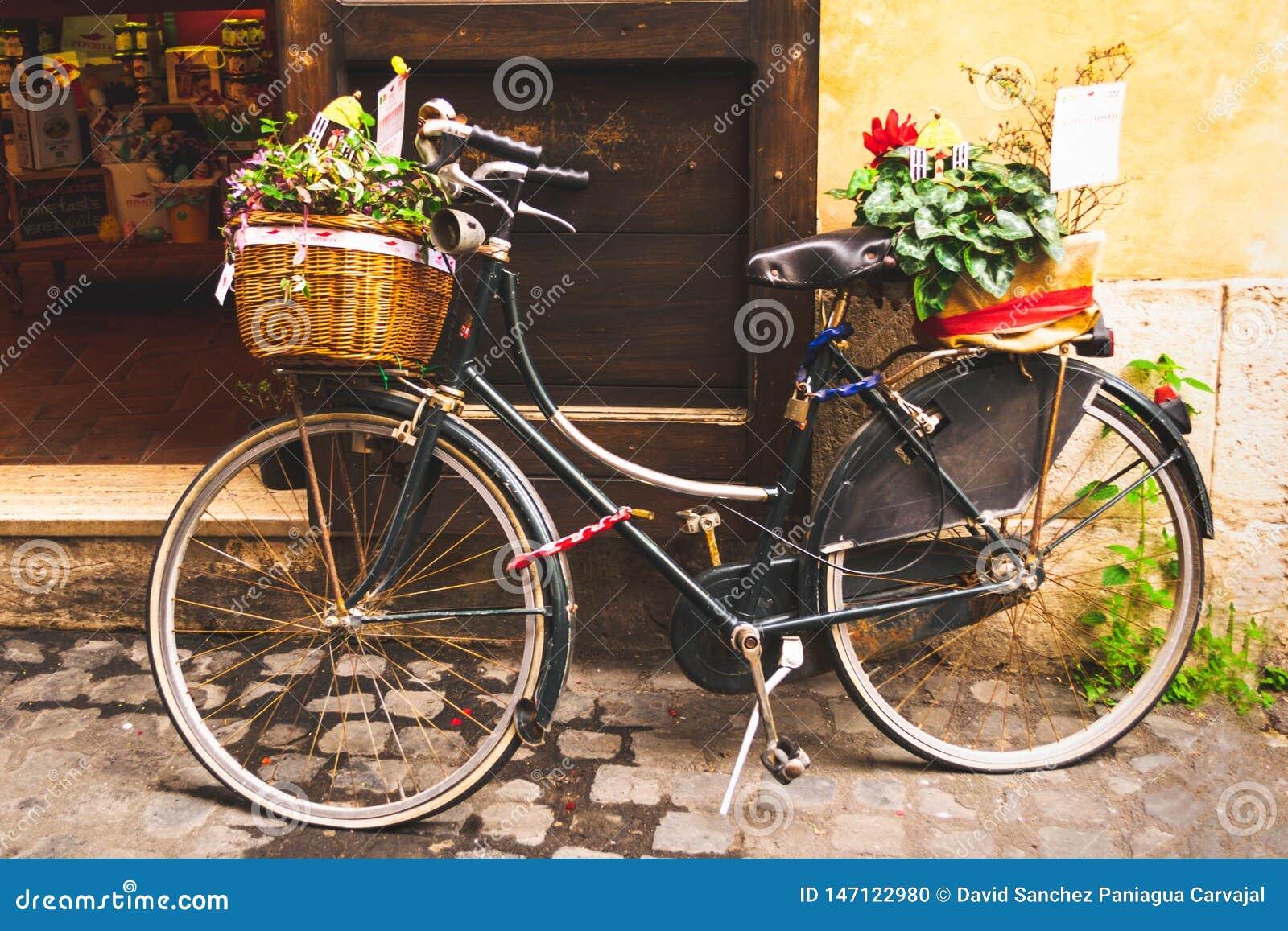 用植物装饰的经典自行车停放在与软和温暖的口气的一个商店门前面