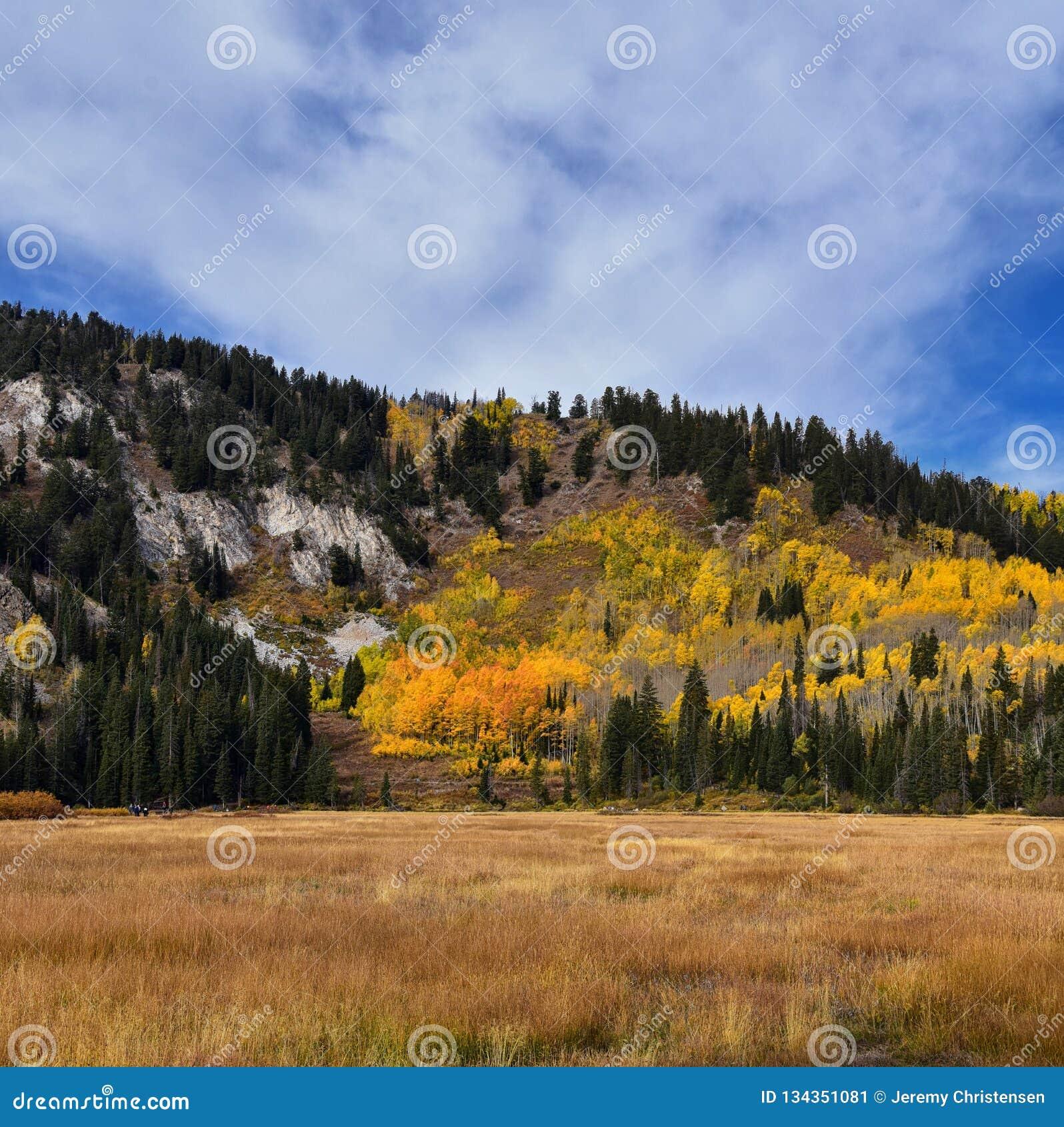 由孑然的银色湖和在大三角叶杨峡谷的布赖顿滑雪场 从远足和木板走道足迹的全景