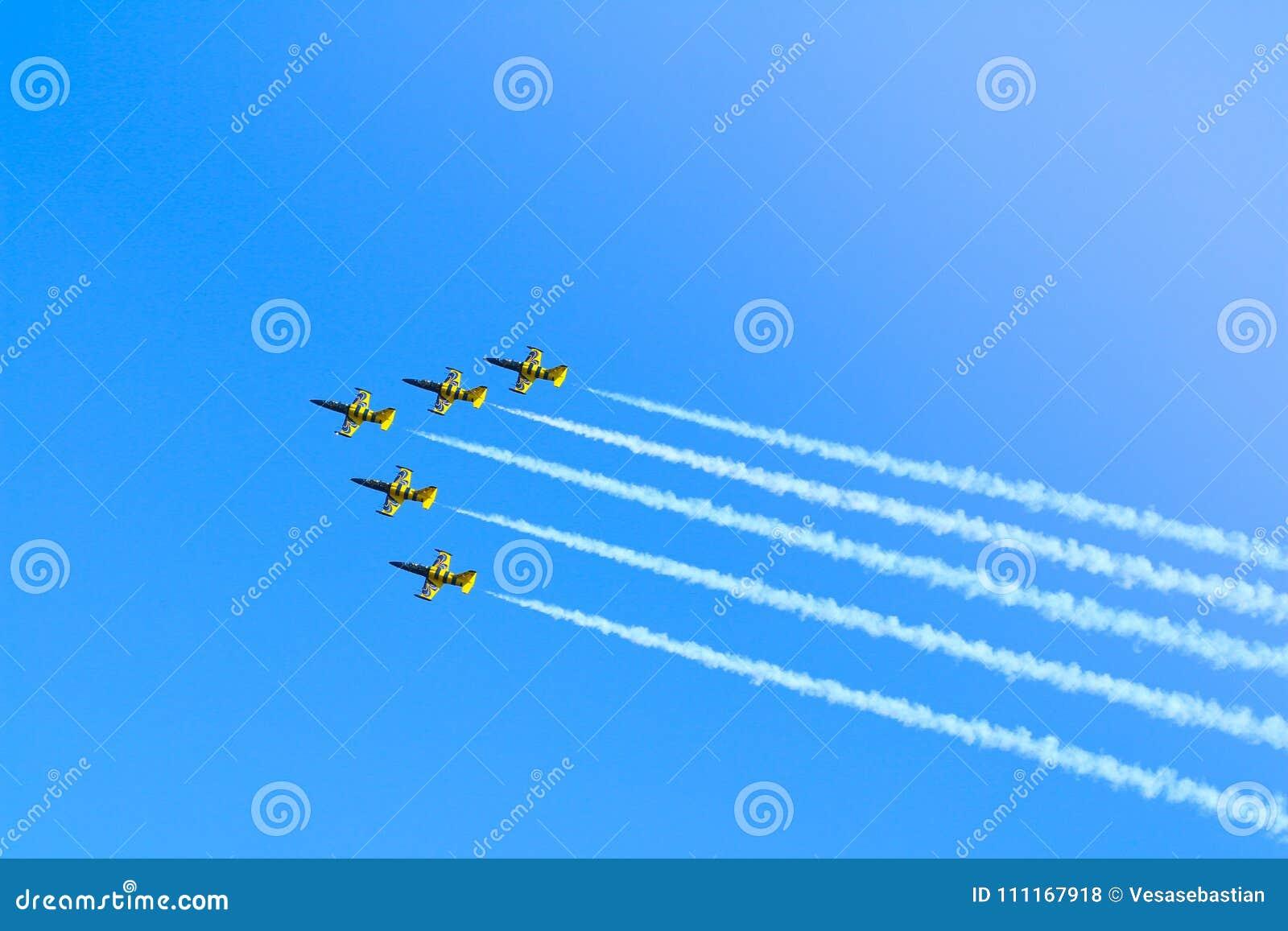 由波儿地克的蜂喷气机的L-39C Albatros特技飞机合作执行示范飞行在蒂米什瓦拉Airshow