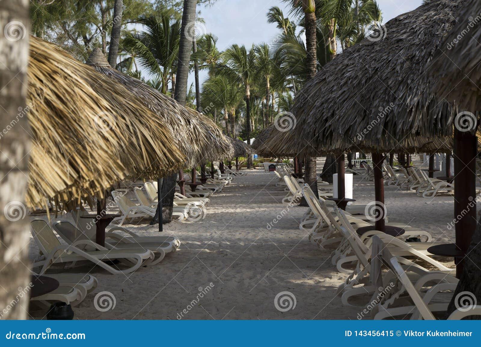 由海的假期在多米尼加共和国