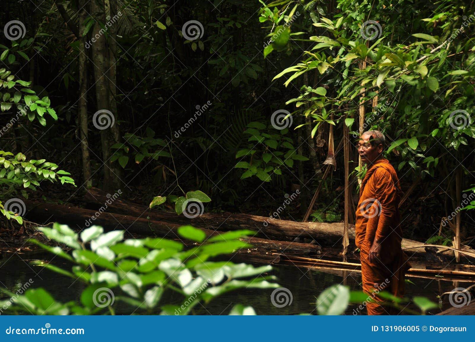 甲米府,泰国- 2014年5月12日:种族修士人在狂放的热带森林,种族亚裔人侧视图橙色长袍身分的