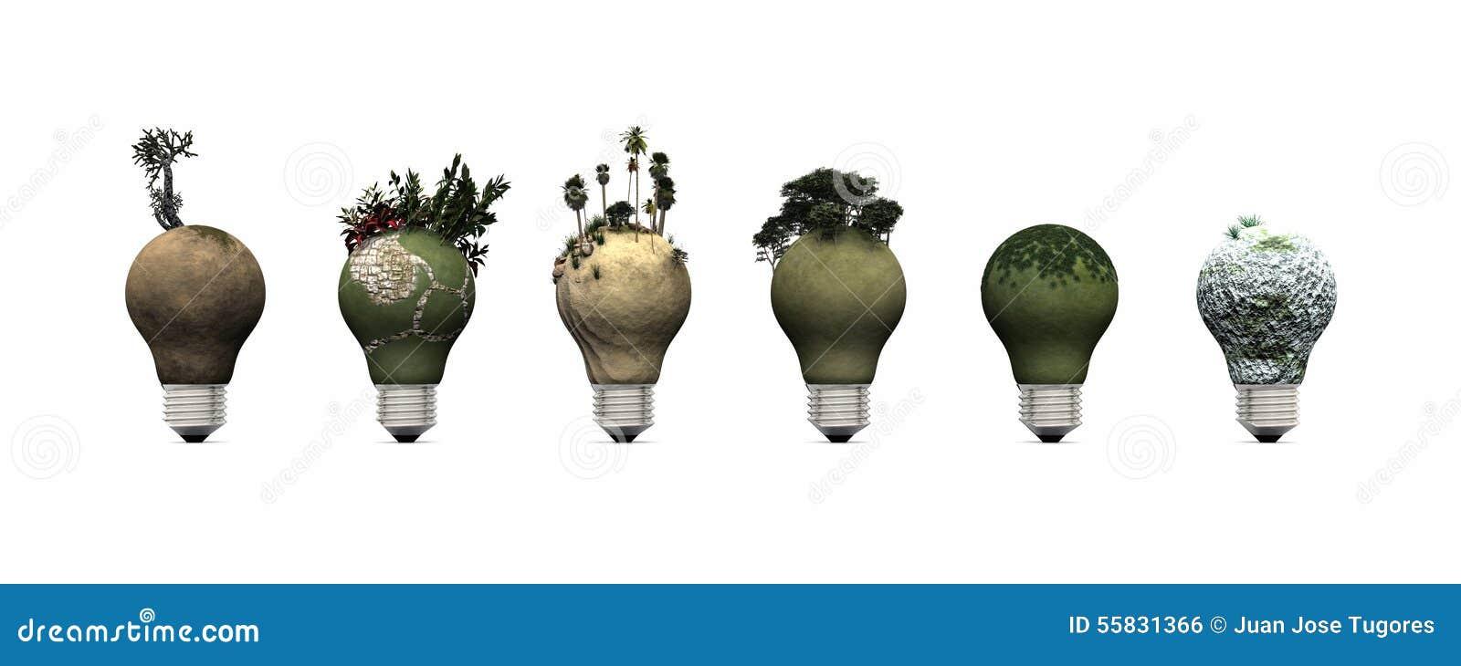 电灯泡和生态系
