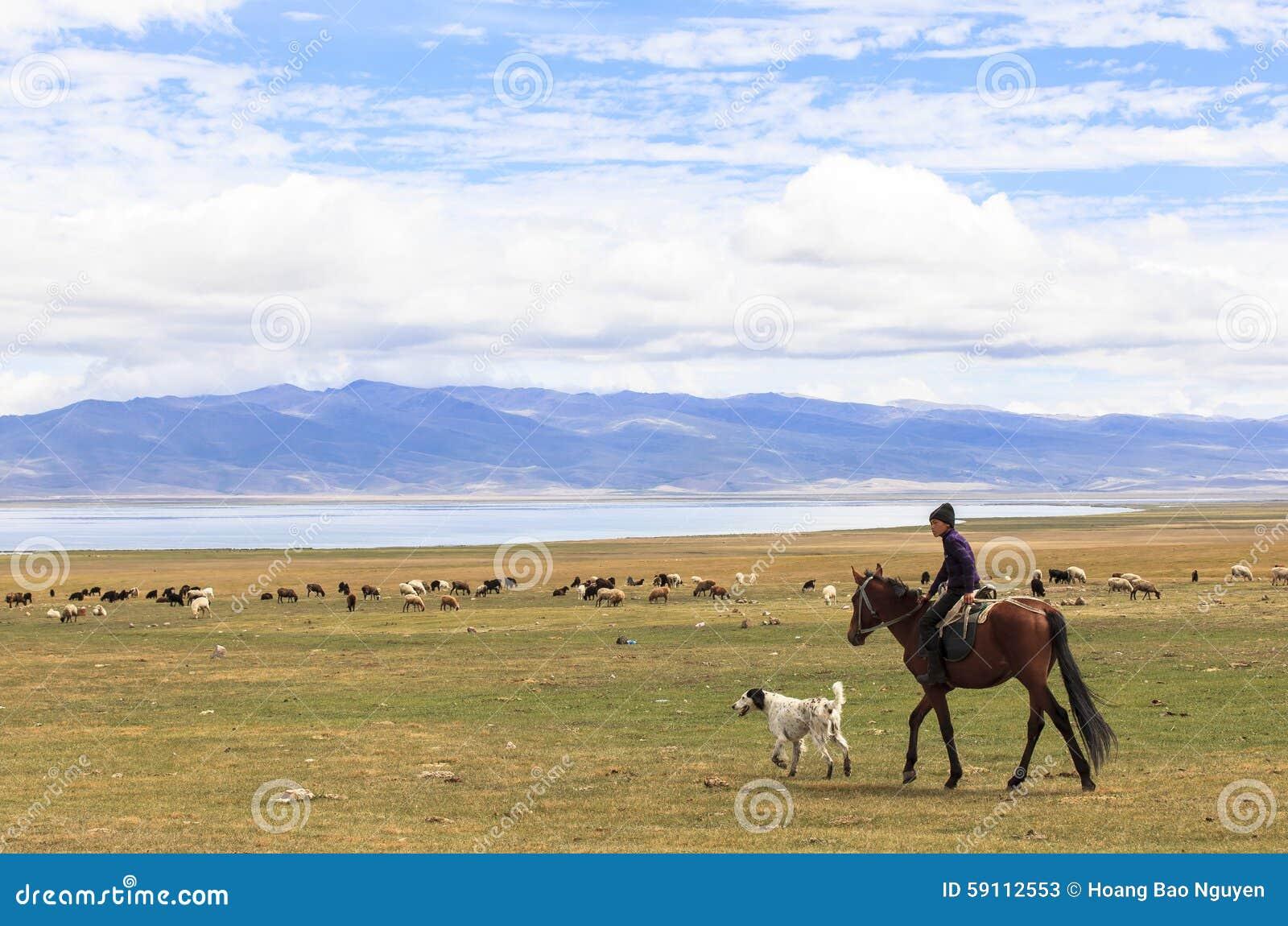 男孩在歌曲Kul湖骑马在吉尔吉斯斯坦