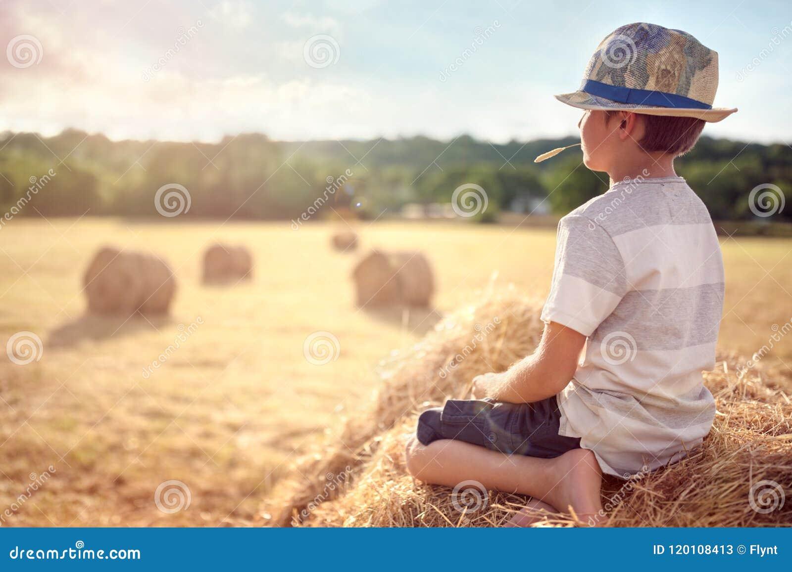 男孩坐一个干草堆在观看日落的夏天