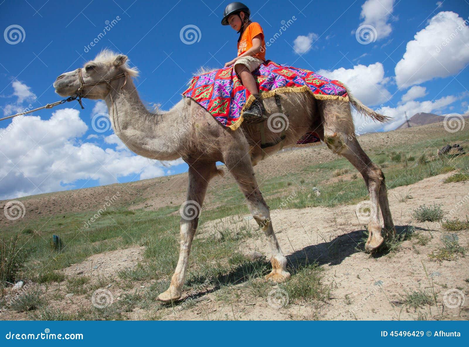 男孩骑马横跨Bactrian