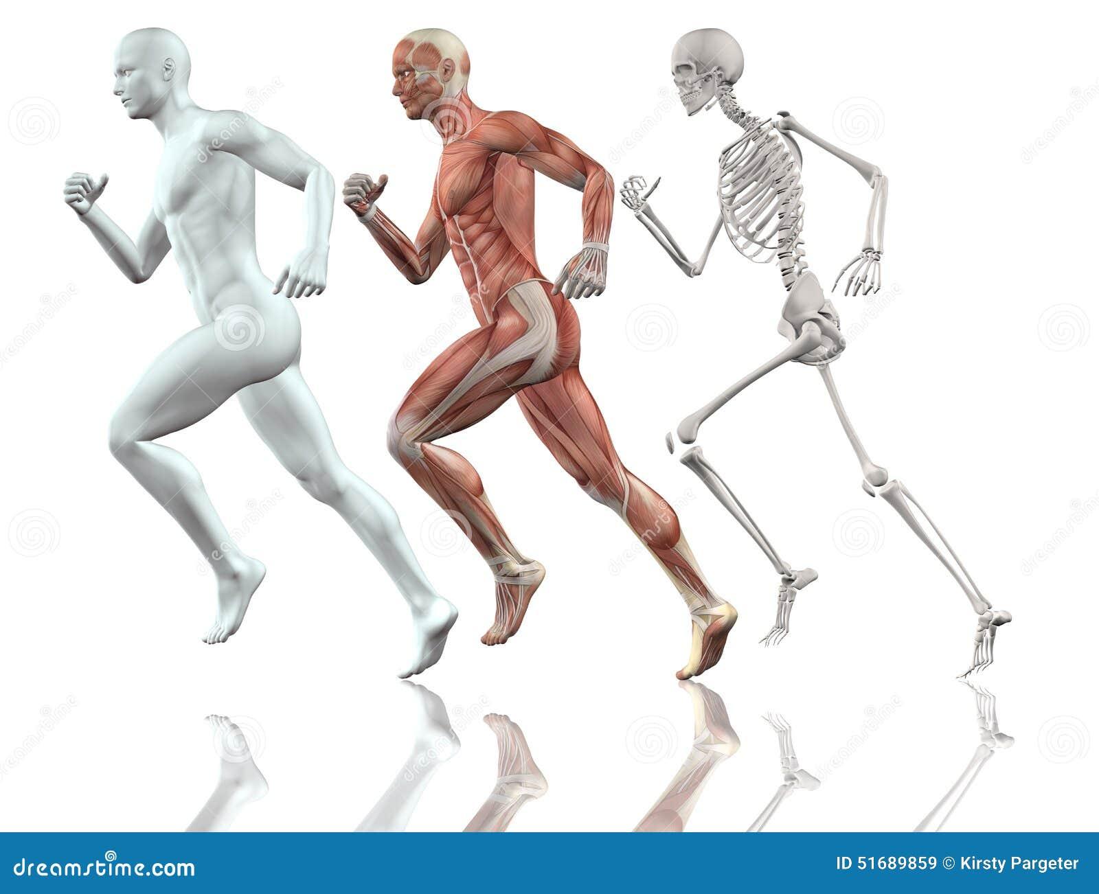 男性图赛跑