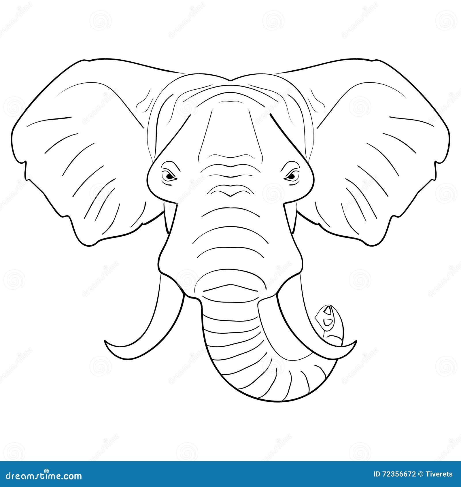 黑白大象面孔被画的墨水剪影