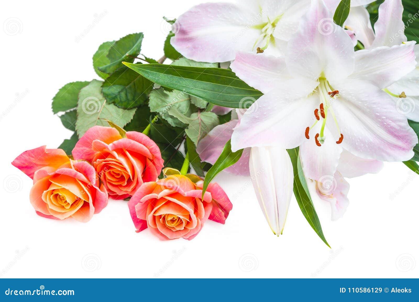 白桃红色百合和三朵红橙色玫瑰在白色背景