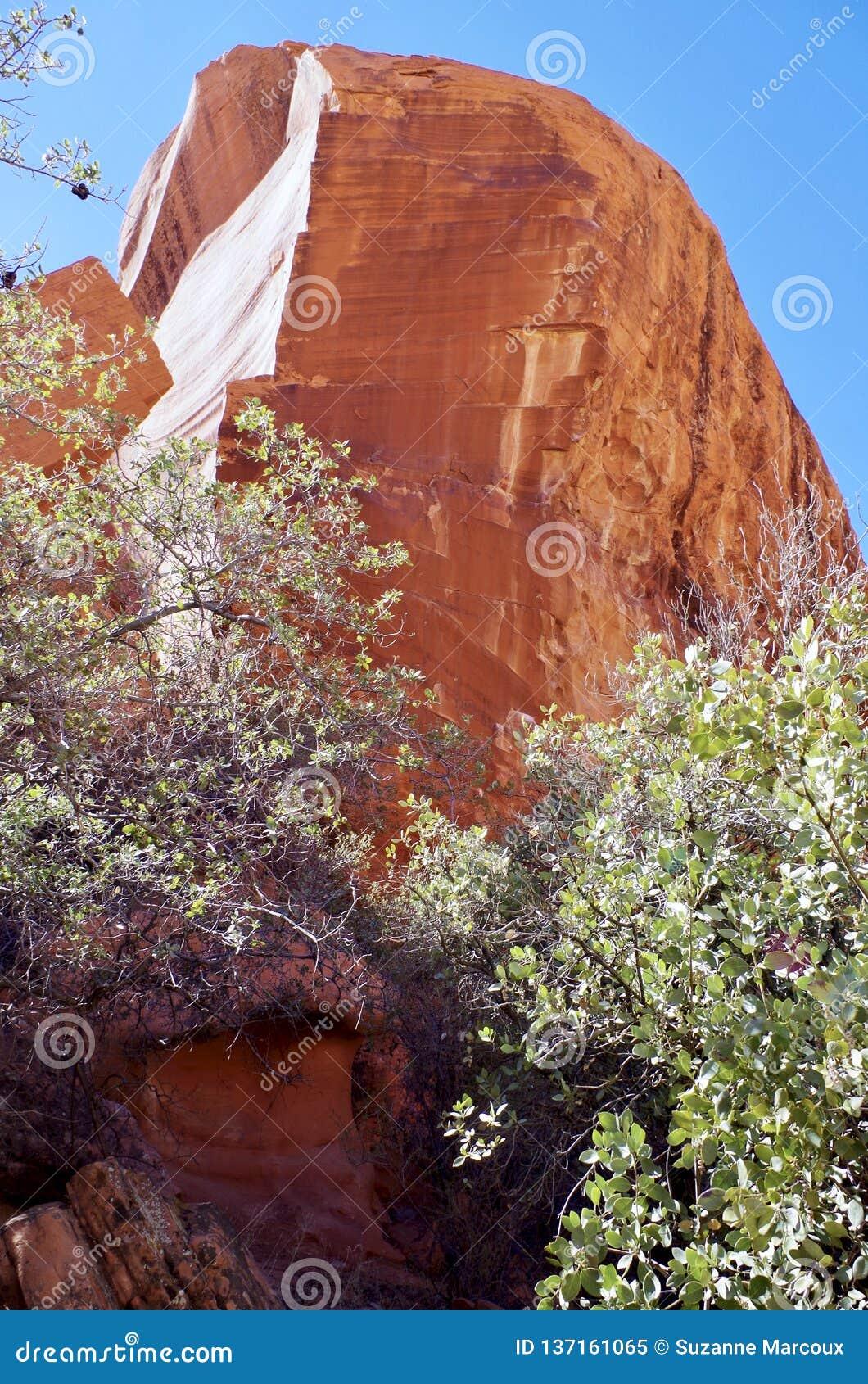 白棉布坦克,红色岩石保护地区,内华达南部,美国