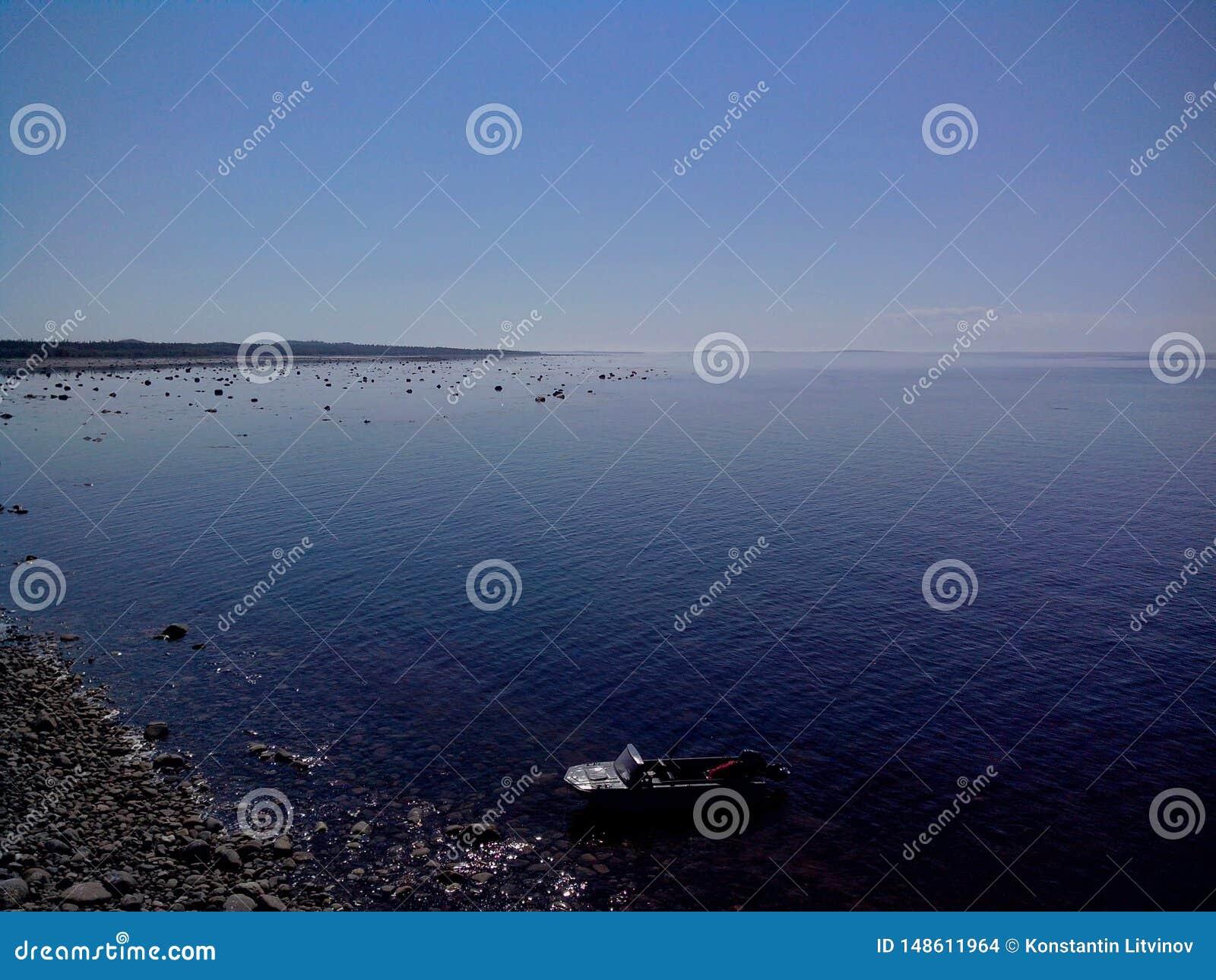 白海的沿海水域海角白海豚的,从监测blagami的塔的看法,索洛韦茨基群岛,阿尔汉格尔斯克