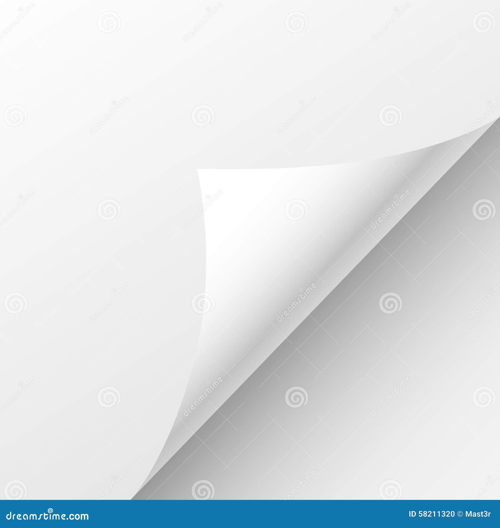 白纸板料卷毛角落,空的页弯