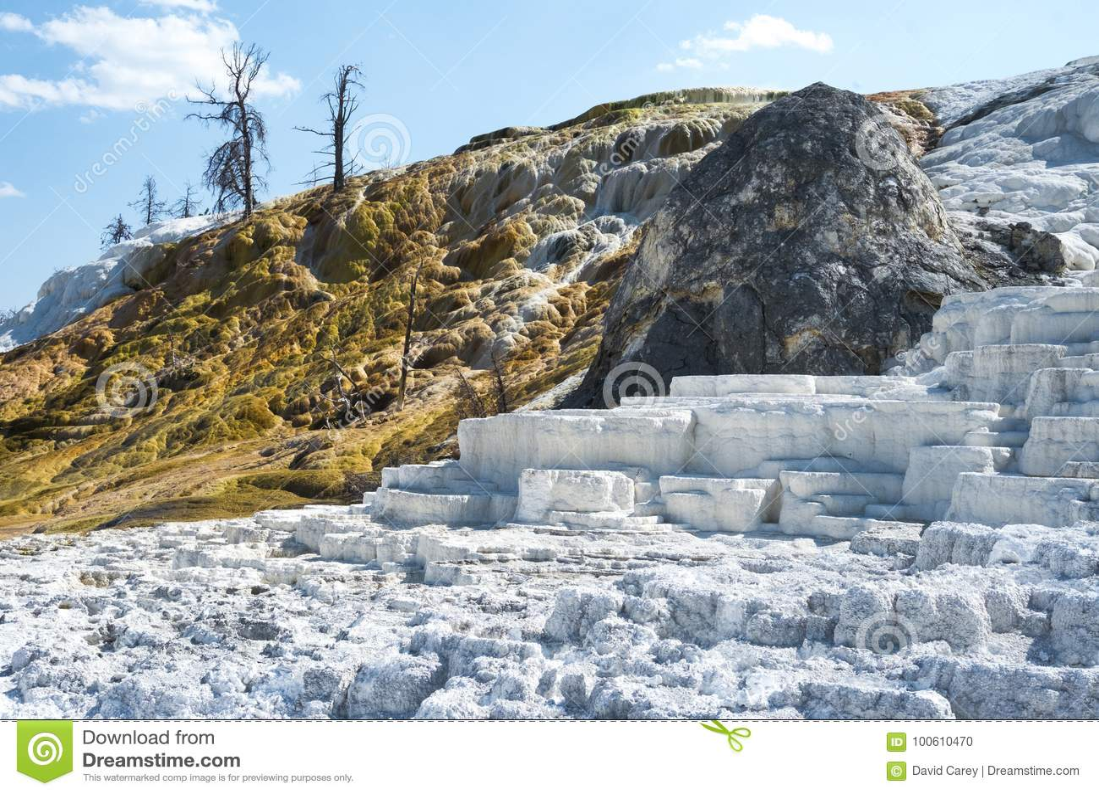 白色和金大阳台在马默斯斯普林斯大阳台,黄石国家公园,怀俄明,美国
