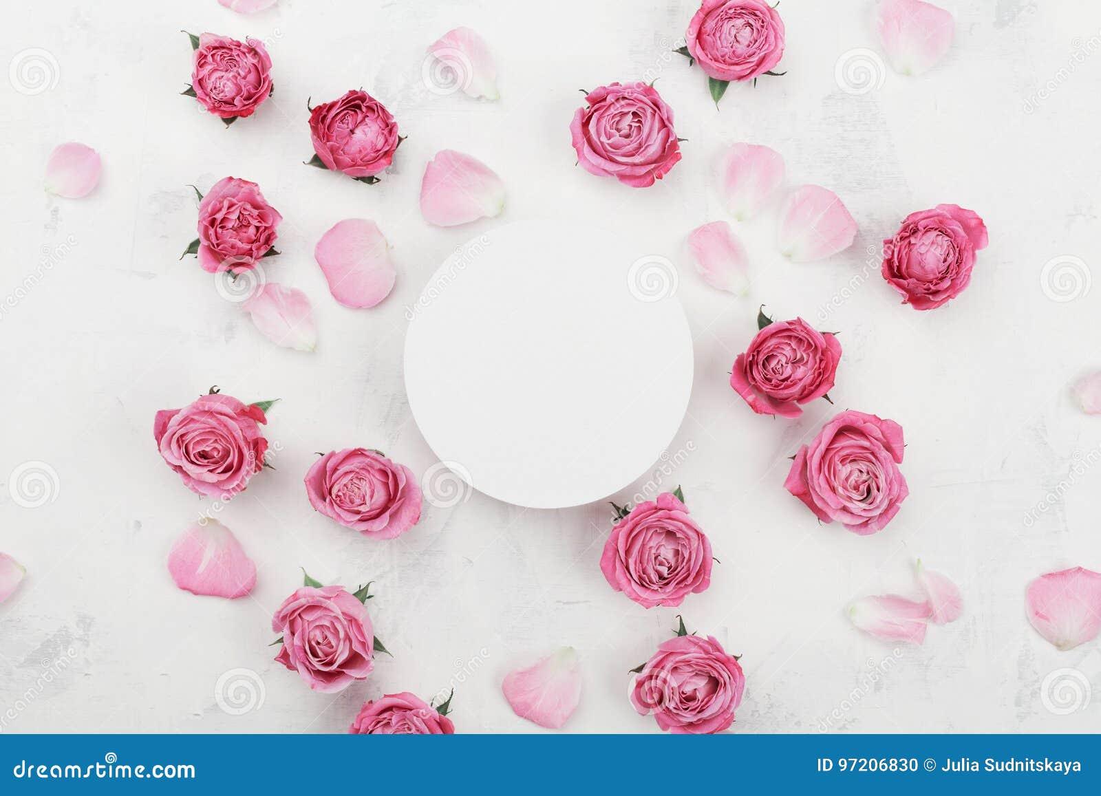 白色圆的空白、桃红色玫瑰花和瓣温泉或婚礼大模型的在轻的背景顶视图 美好的花卉模式