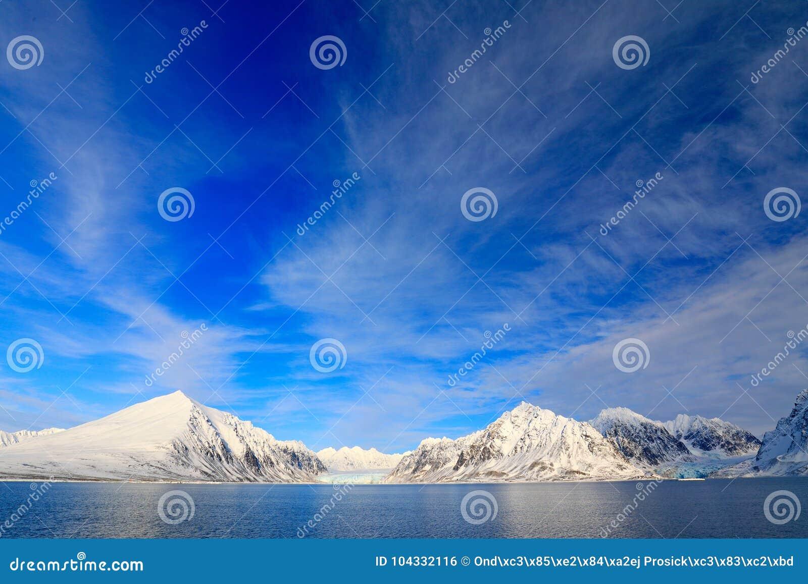 白色多雪的山,蓝色冰川斯瓦尔巴特群岛,挪威 冰在海洋 冰山微明,海洋 与冰川的桃红色云彩 美丽的L.A.在晚上