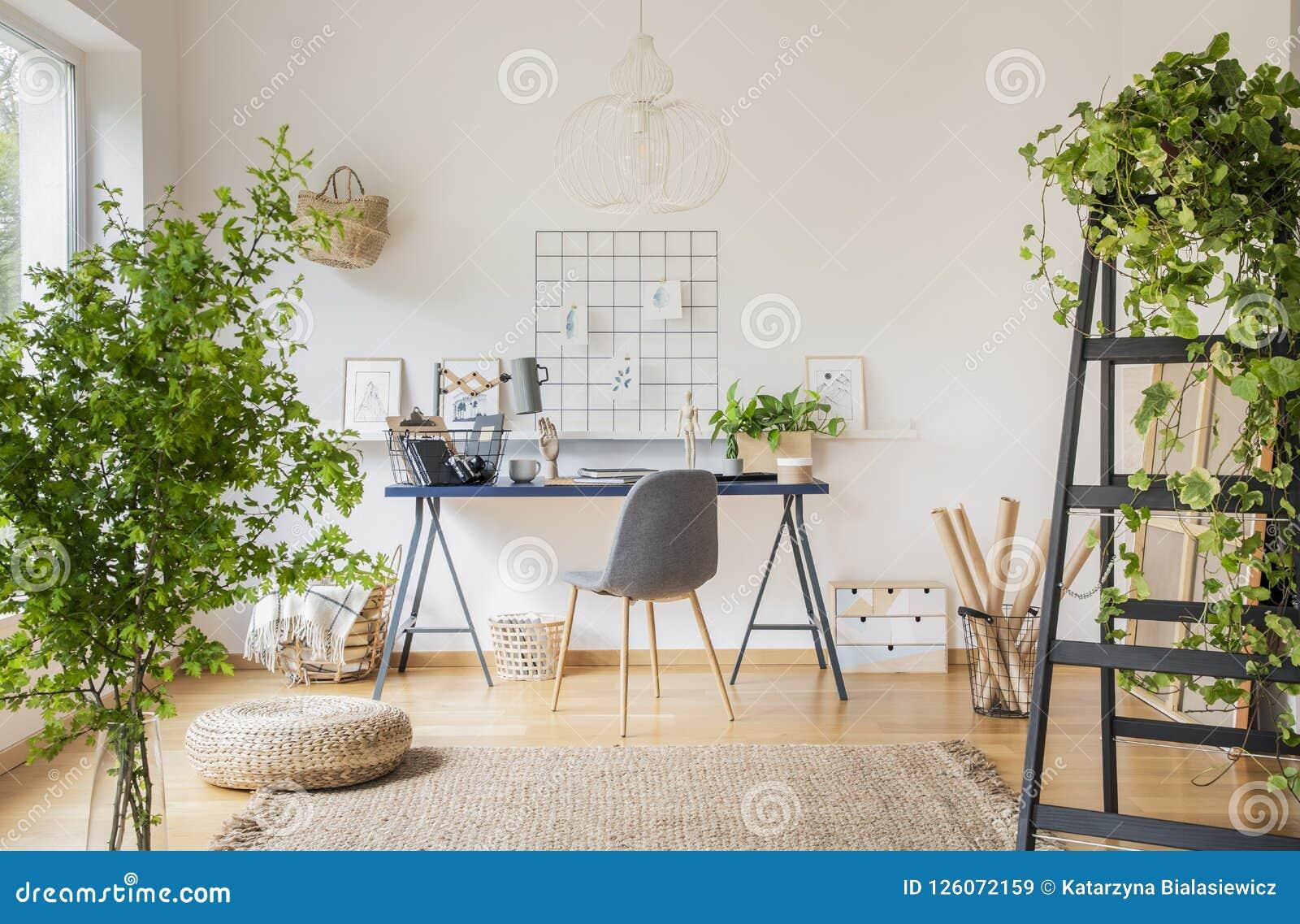 白色宽敞家庭办公室内部的植物与在地毯的蒲团在书桌的灰色椅子附近 实际照片