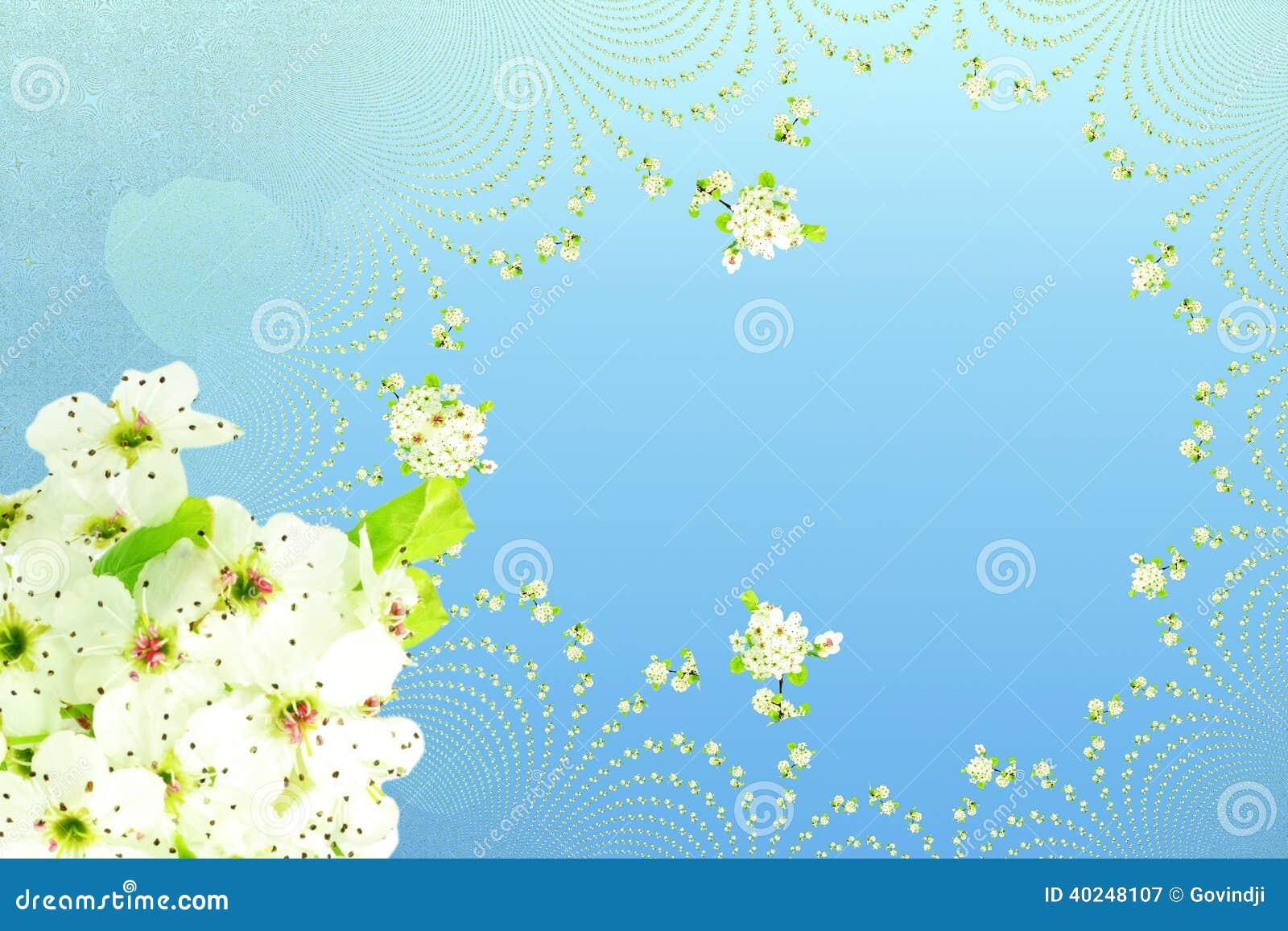 白色春天花纹理天蓝色背景图片