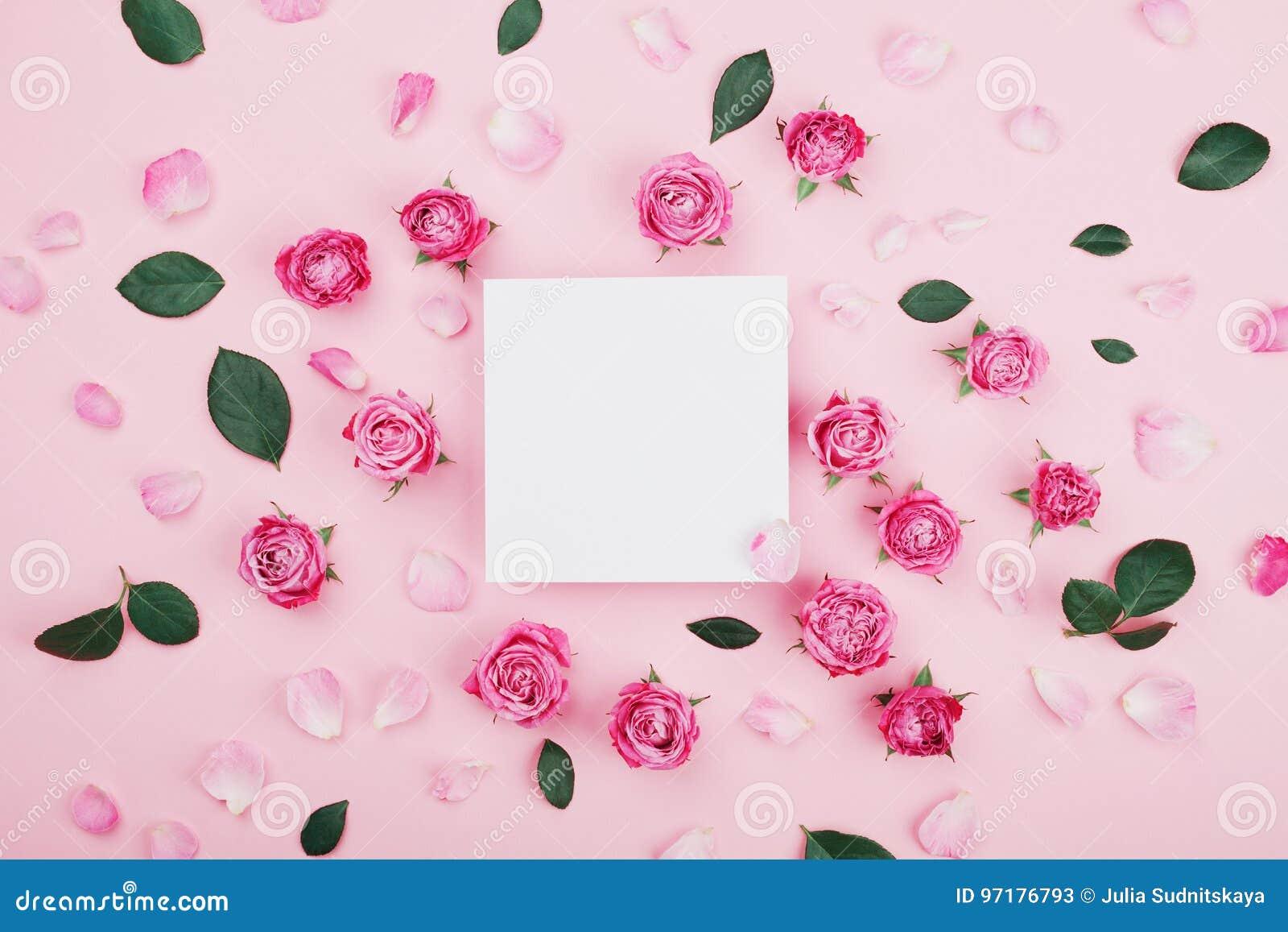 白色框架空白、桃红色玫瑰花和瓣温泉或婚礼大模型的在淡色背景顶视图 美好的花卉模式