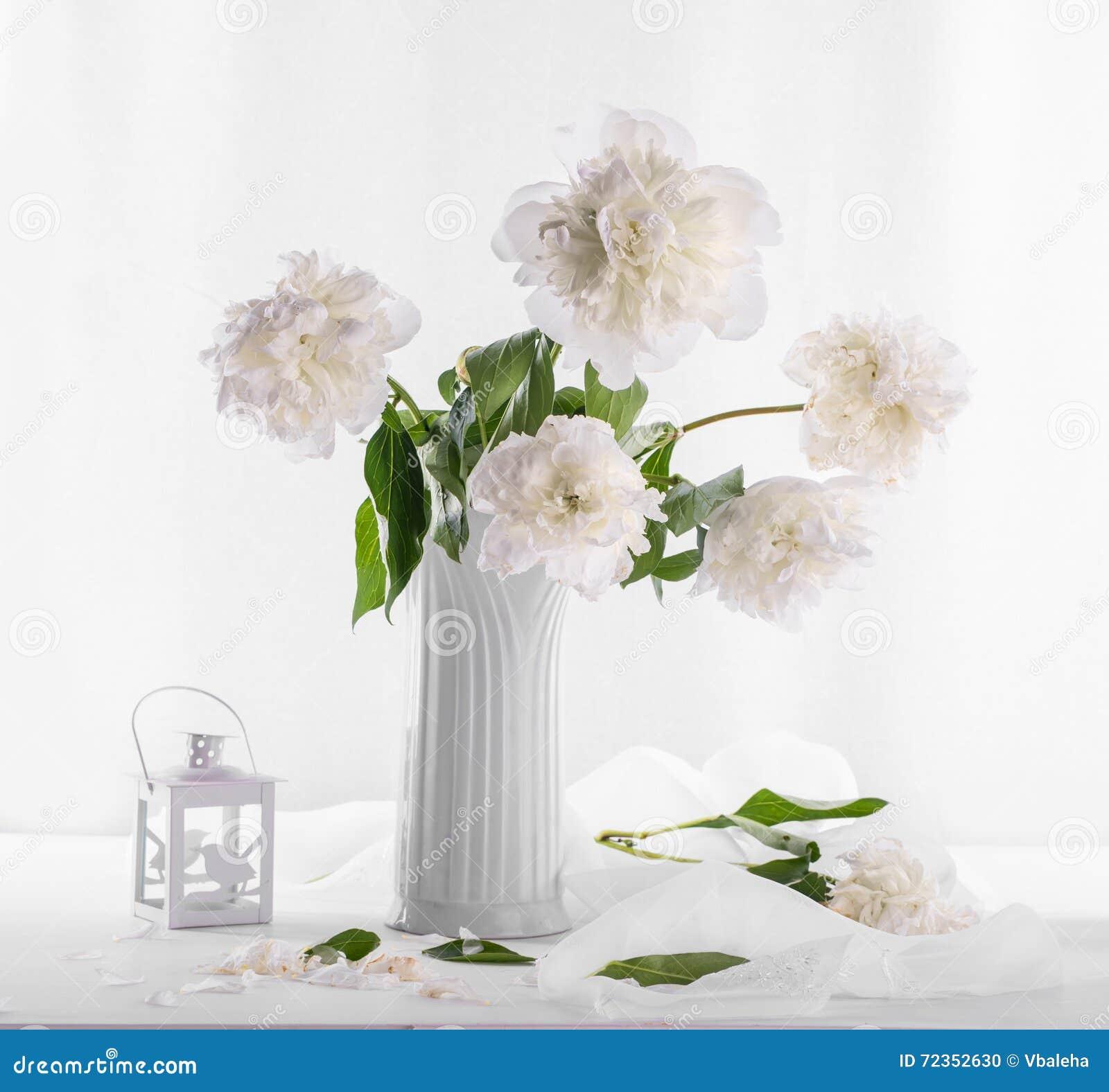 白色牡丹美丽的花束