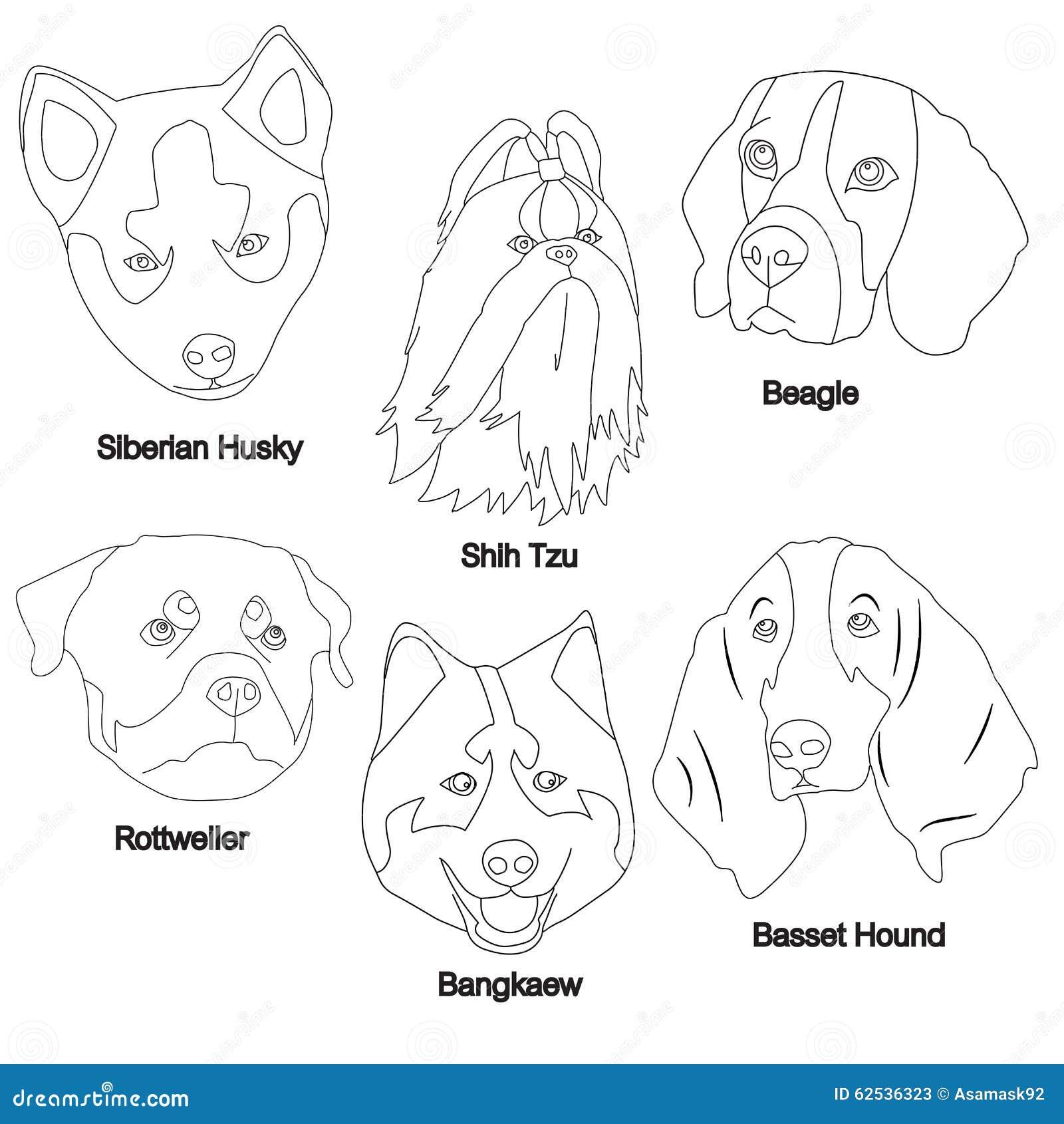 黑白色狗面孔集合