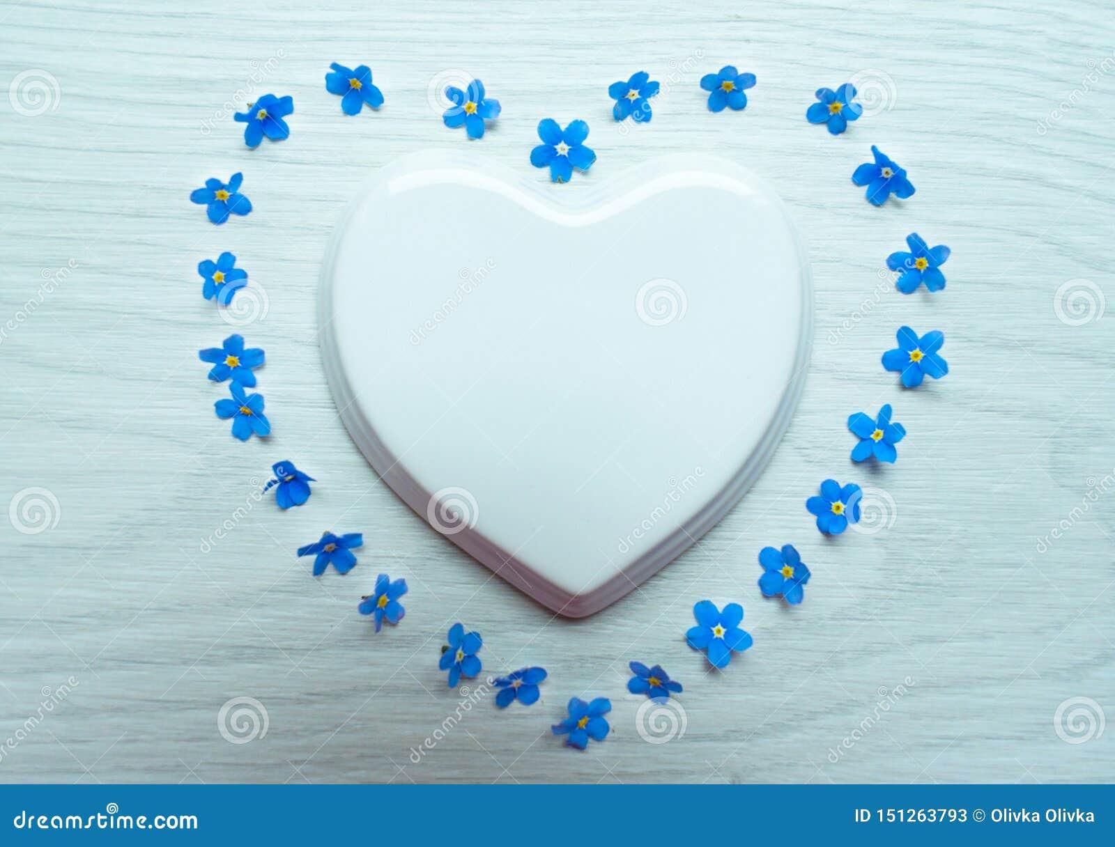 白色瓷心脏和蓝色花被计划以在白色背景的心脏的形式 r