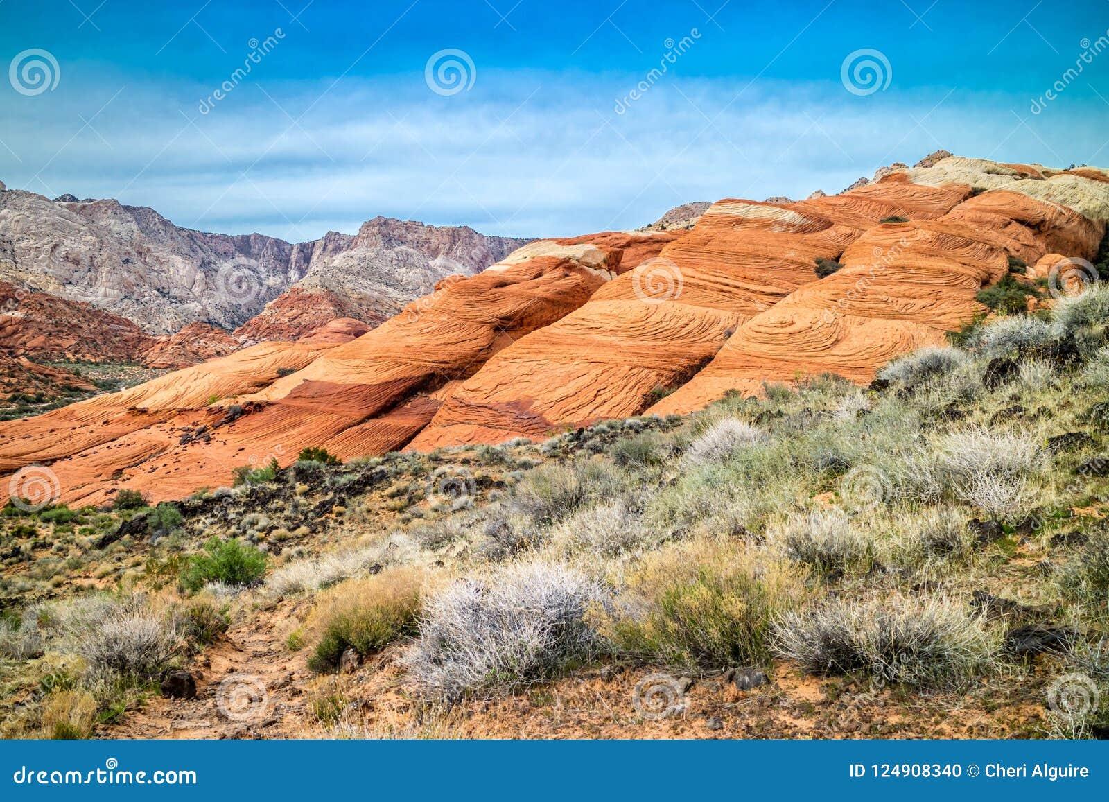 白色那瓦伙族人砂岩在雪峡谷国家公园,犹他