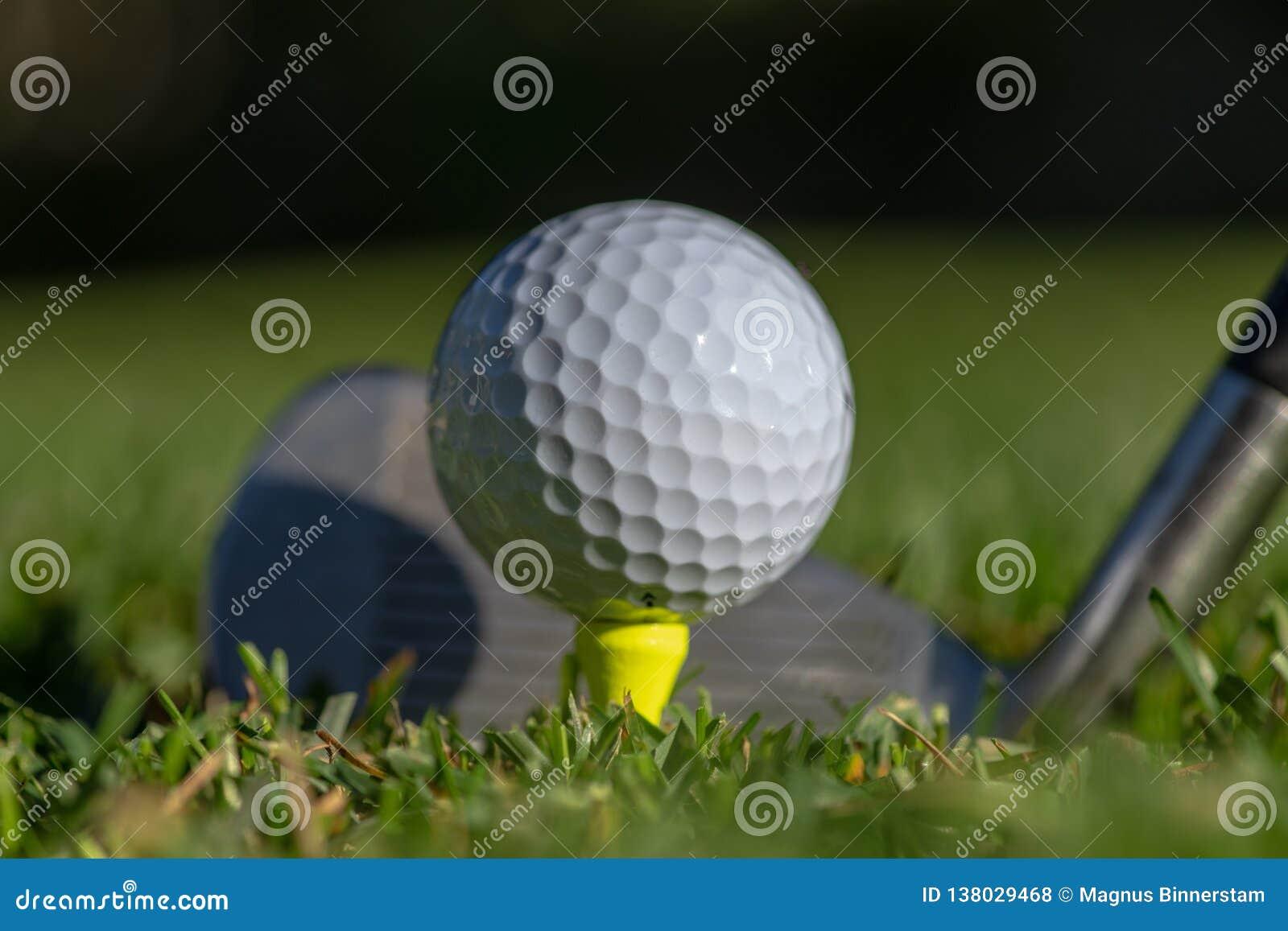 白色高尔夫球在一个黄色发球区域准备了与在它后的俱乐部面孔和有软的绿色背景