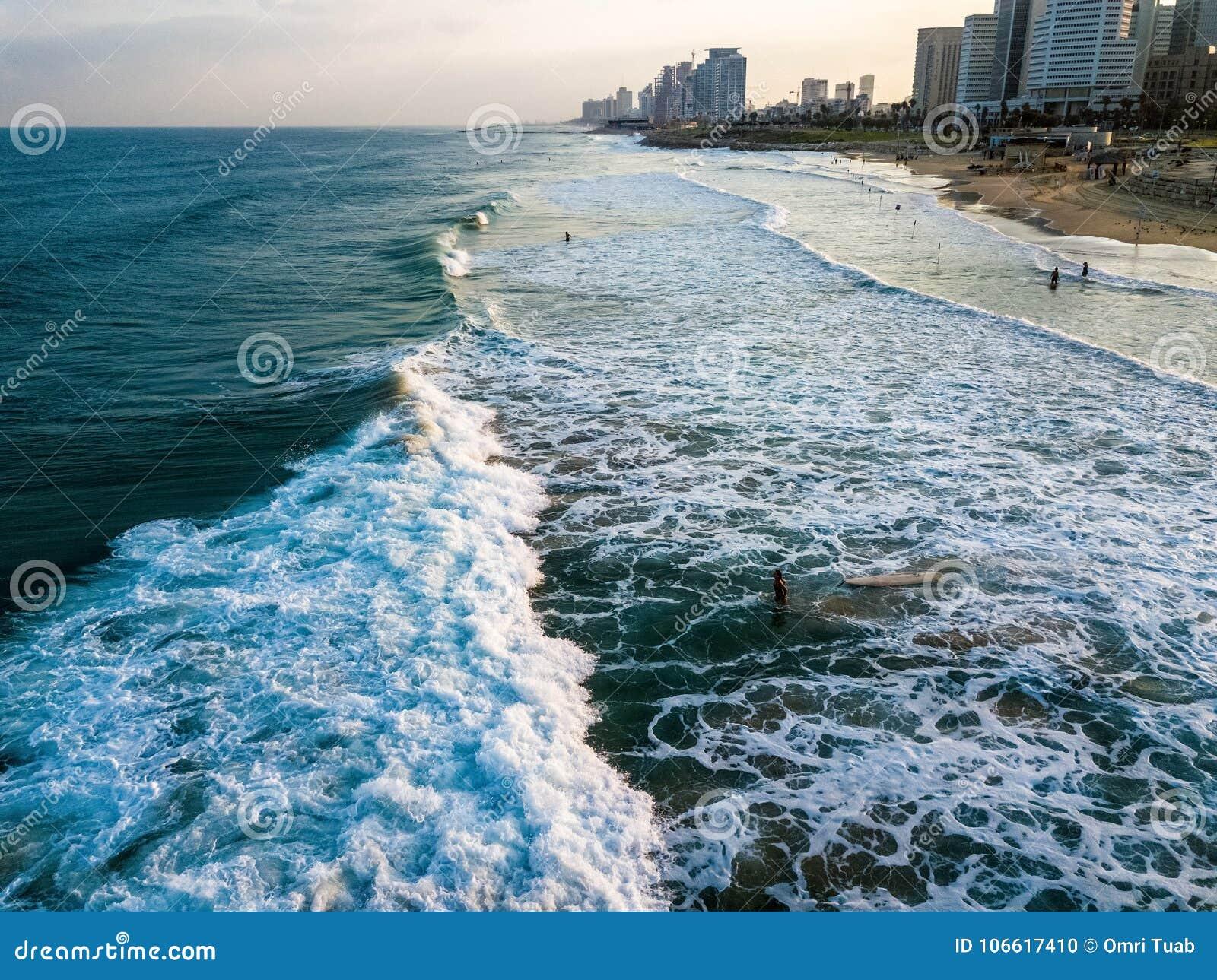 的冲浪者面对波浪的寄生虫观点