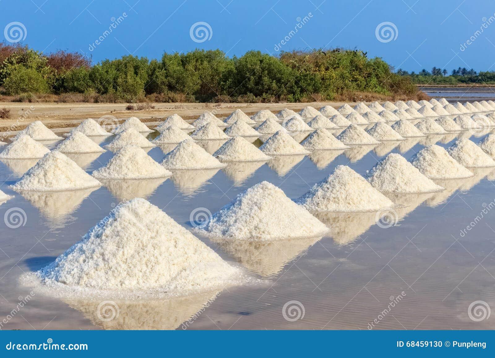 盐哺-m�f��dy.�9�b�-)�/i_盐堆在盐农场,泰国.