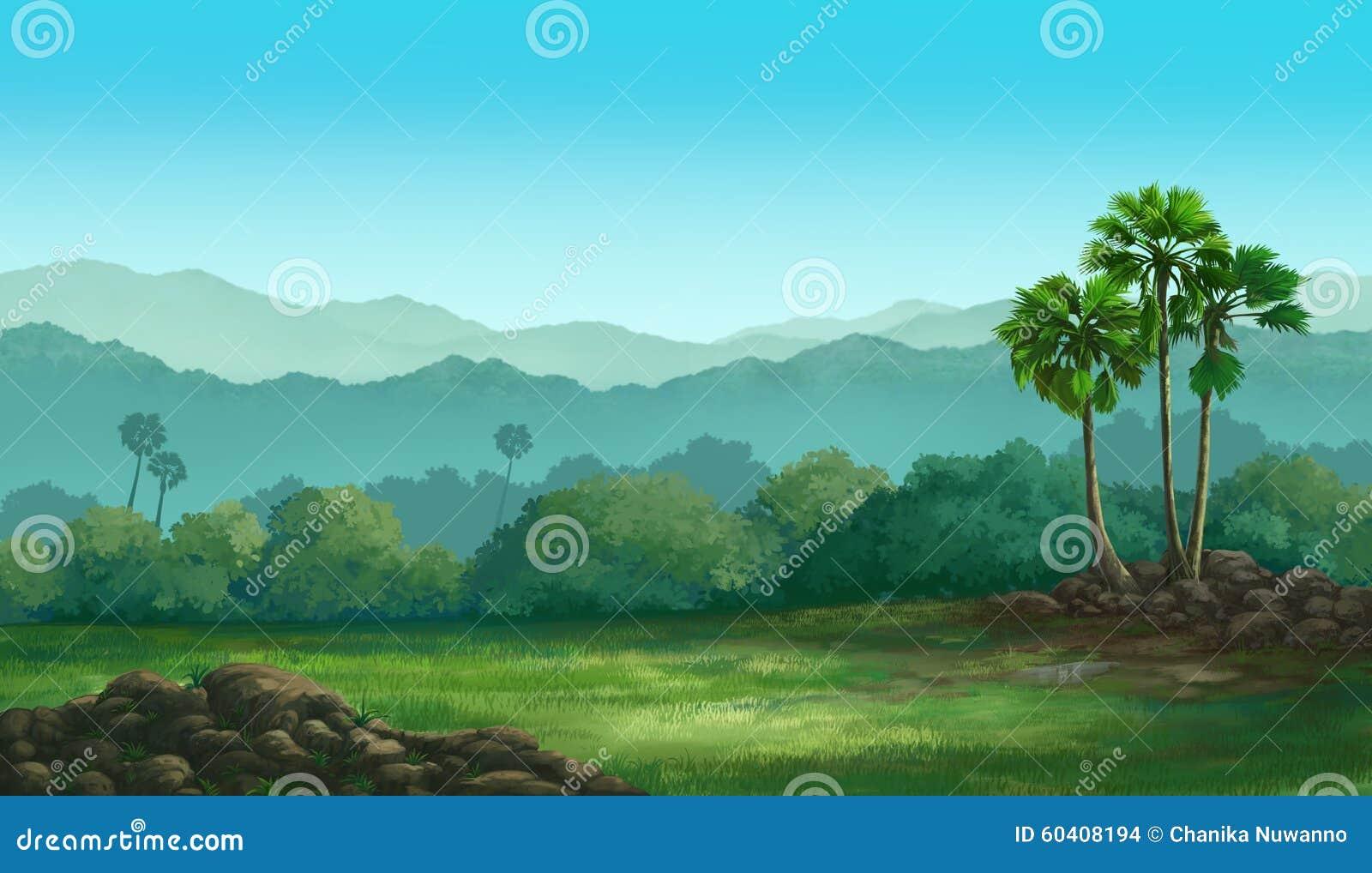 看法扇叶树头榈棕榈
