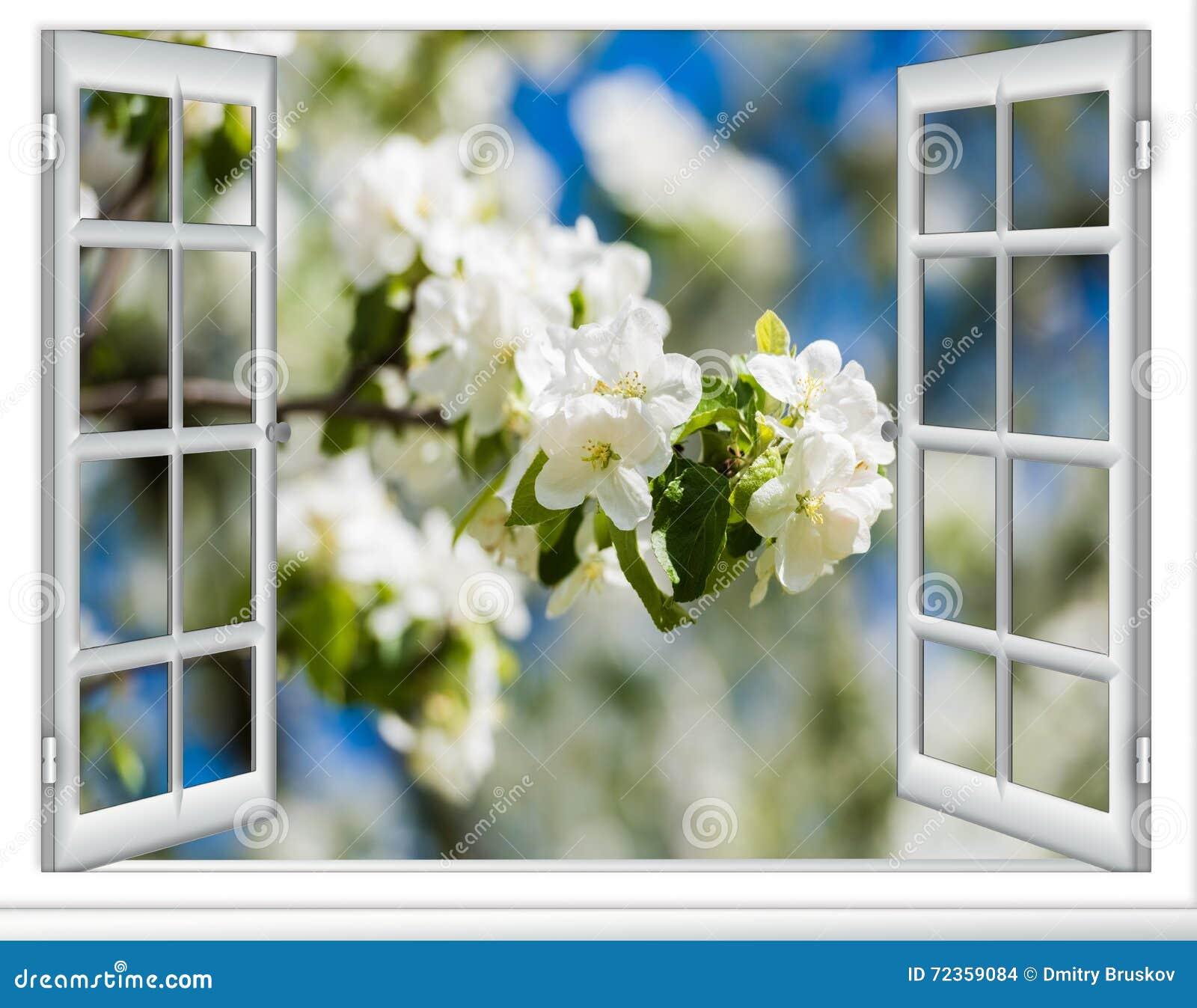 看法窗口开花的树