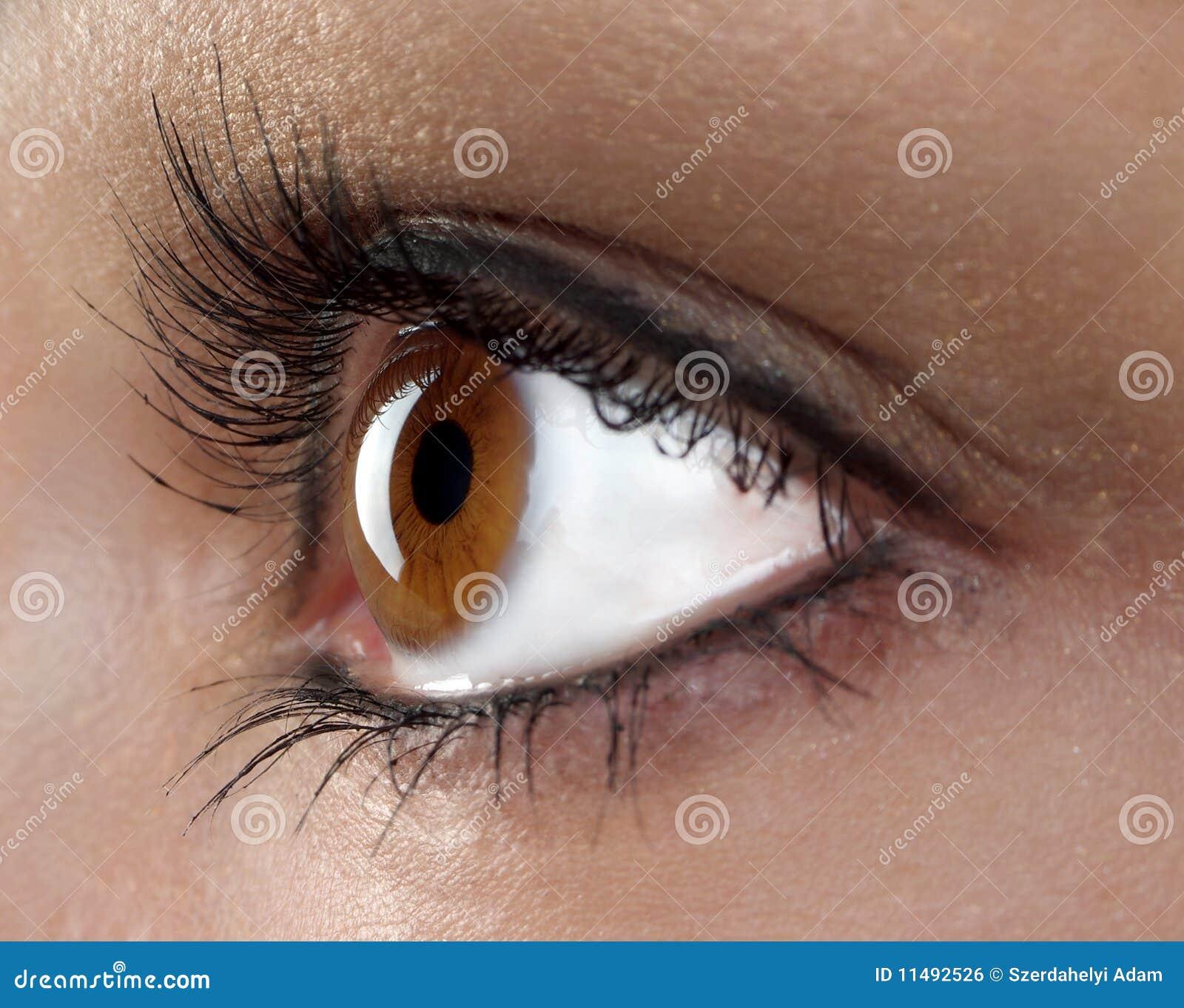 眼睛宏指令