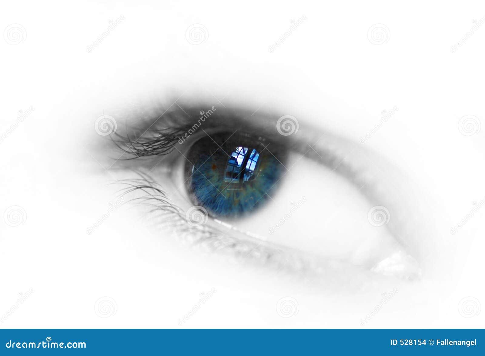 Download 眼睛 库存照片. 图片 包括有 反映, 艺术, 竹子, 颜色, 学生, 人们, 蓝色, 皮肤, 数字式, 眼睛 - 528154