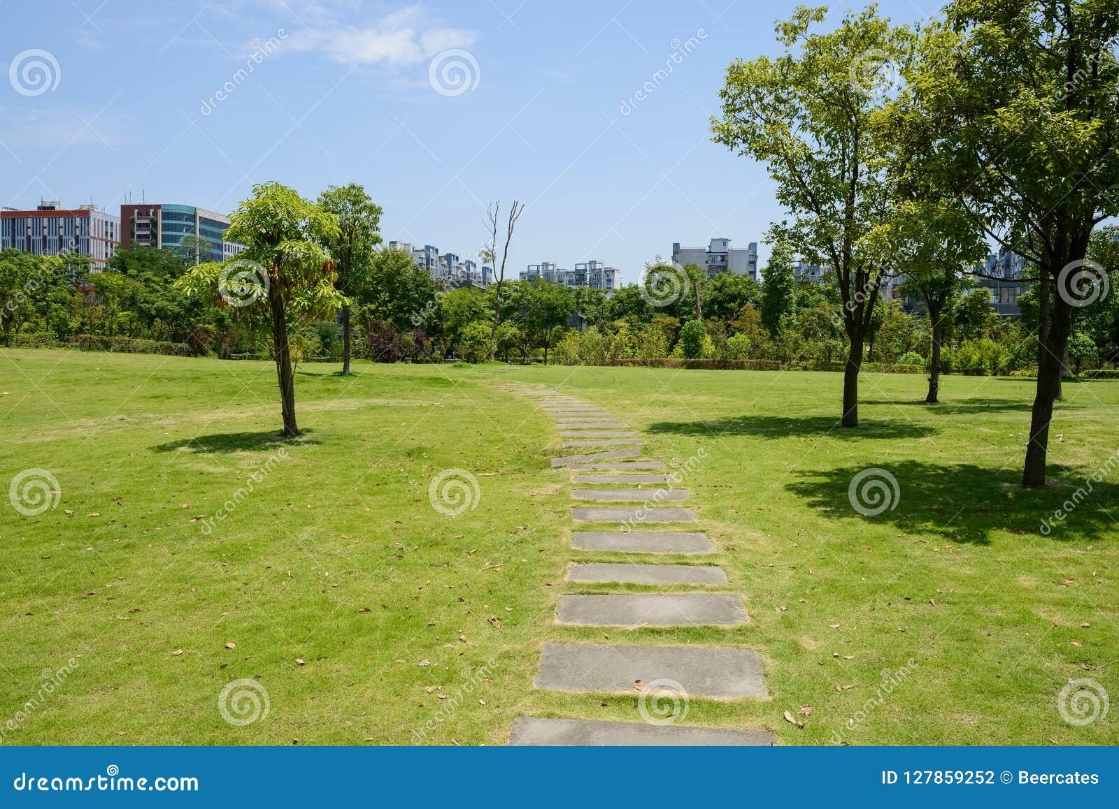 石板道路在有传说上有名大厦的草坪在s的背景中
