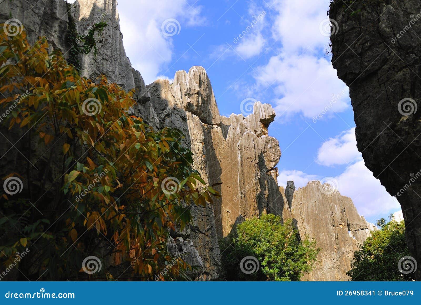 石森林在云南图片