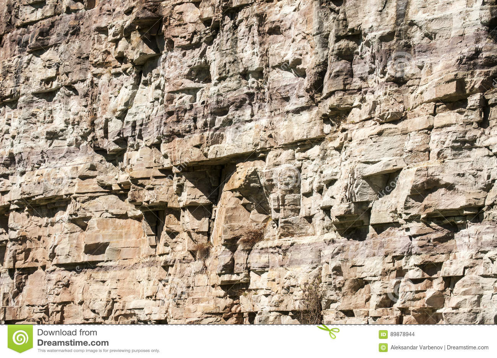 石猎物墙壁