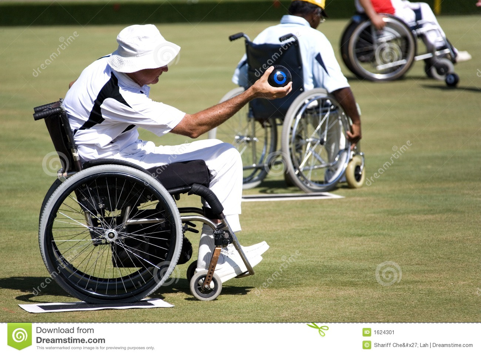 碗主持残疾草坪人人员轮子