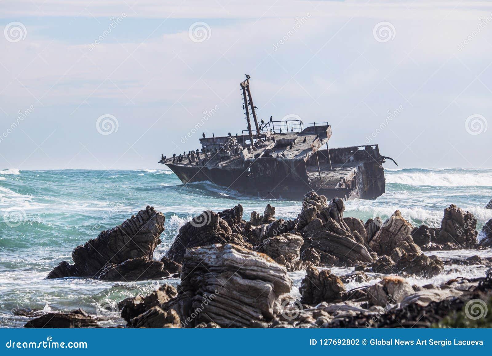 碰撞由一个生锈的老海难的波浪 鸬鹚、海鸥和其他鸟的家