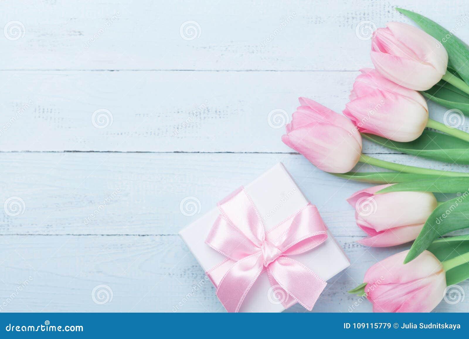 礼物或当前箱子和桃红色郁金香在蓝色木台式视图开花 贺卡为妇女或母亲节 平的位置