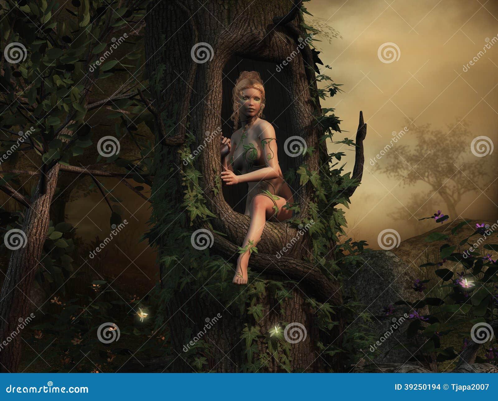 森林的若虫在一个神奇地方.图片