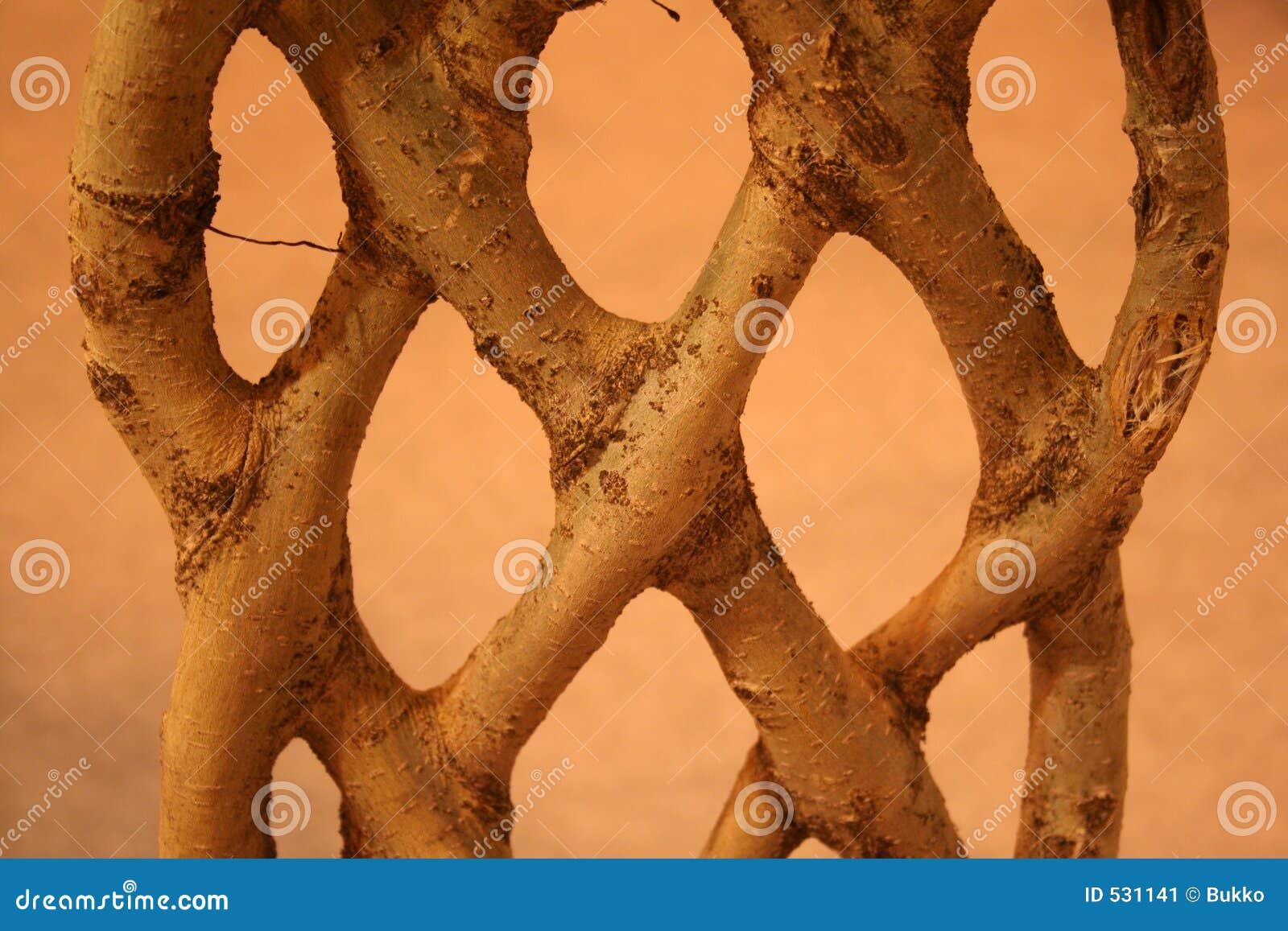 Download 神秘的工厂 库存图片. 图片 包括有 庭院, 装饰, 少见, 木头, 种植, browne, 树木繁茂, 工厂 - 531141
