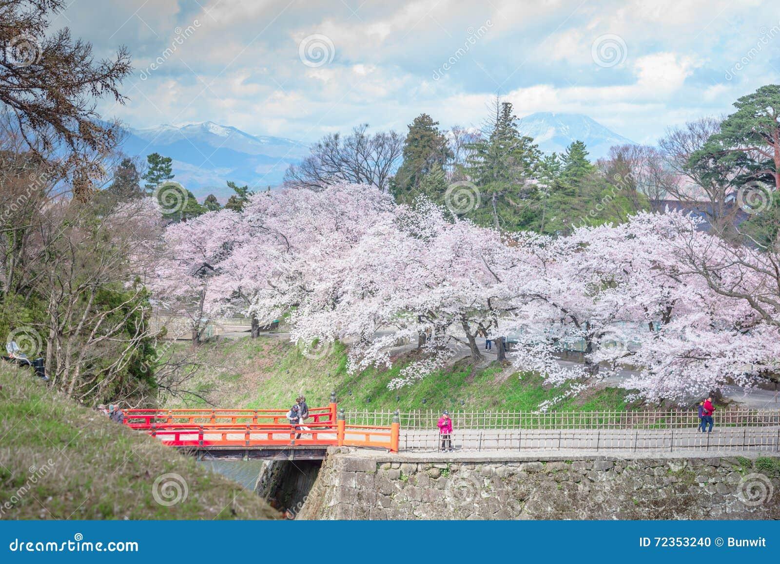 福岛,日本- 4月15,2016 :hund围拢的敦贺城堡