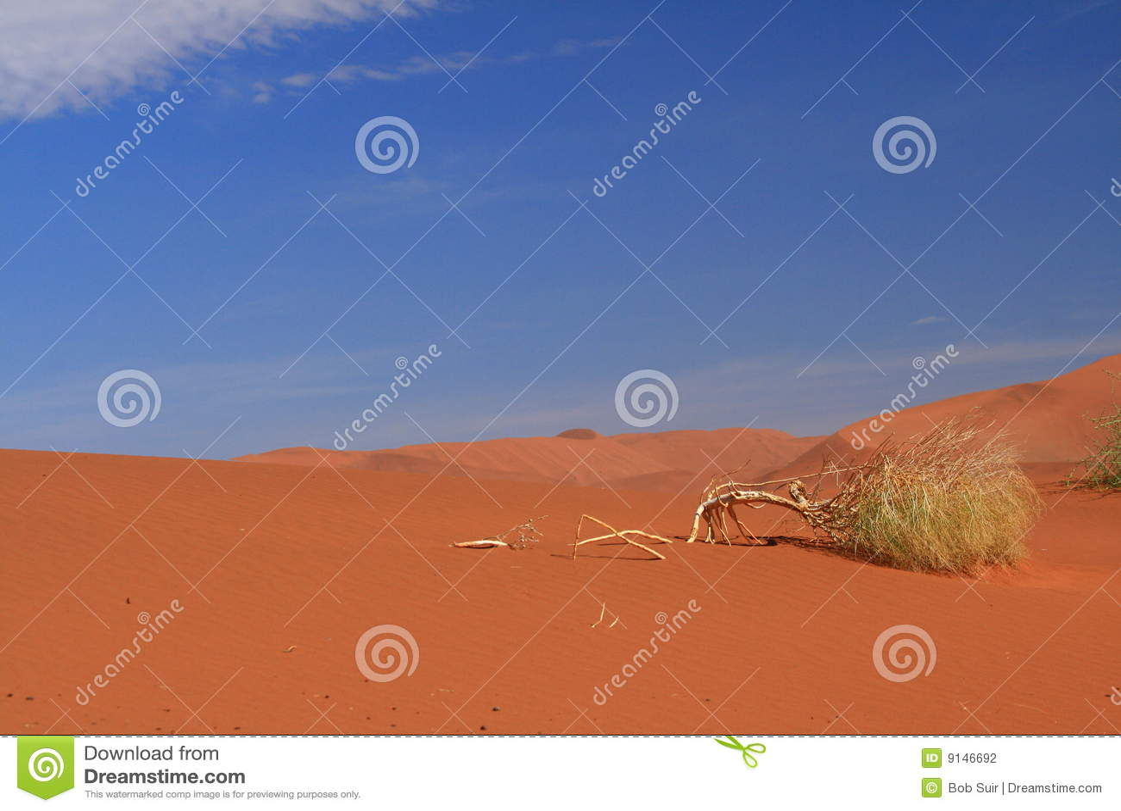 离开纳米比亚视图