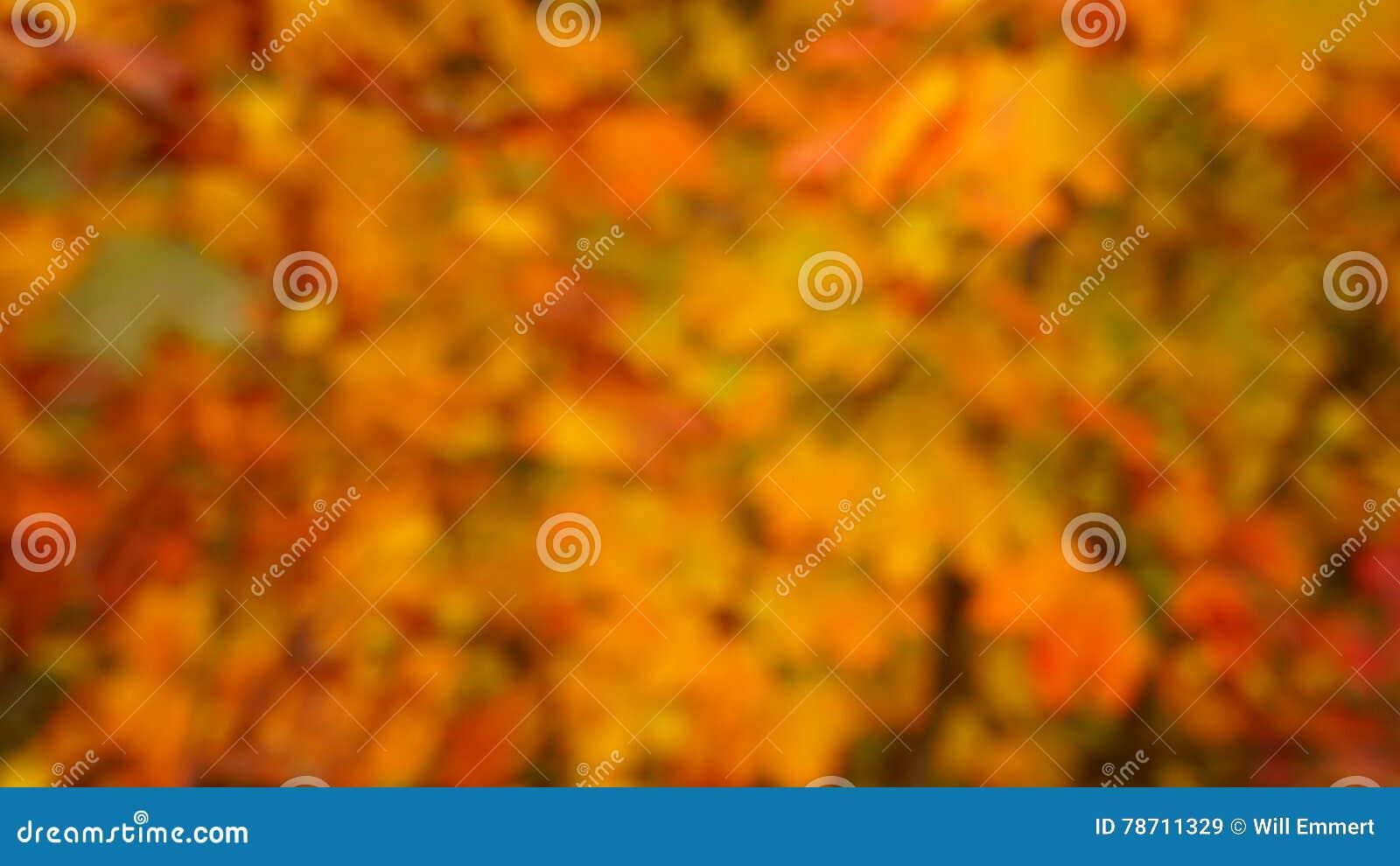 秋天上色背景