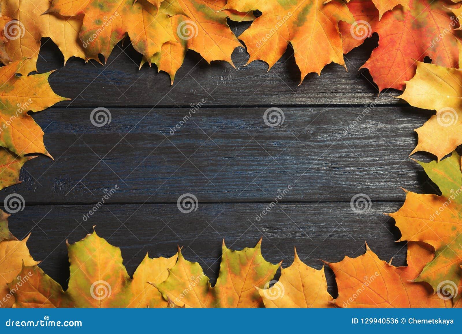 秋天做的框架叶子