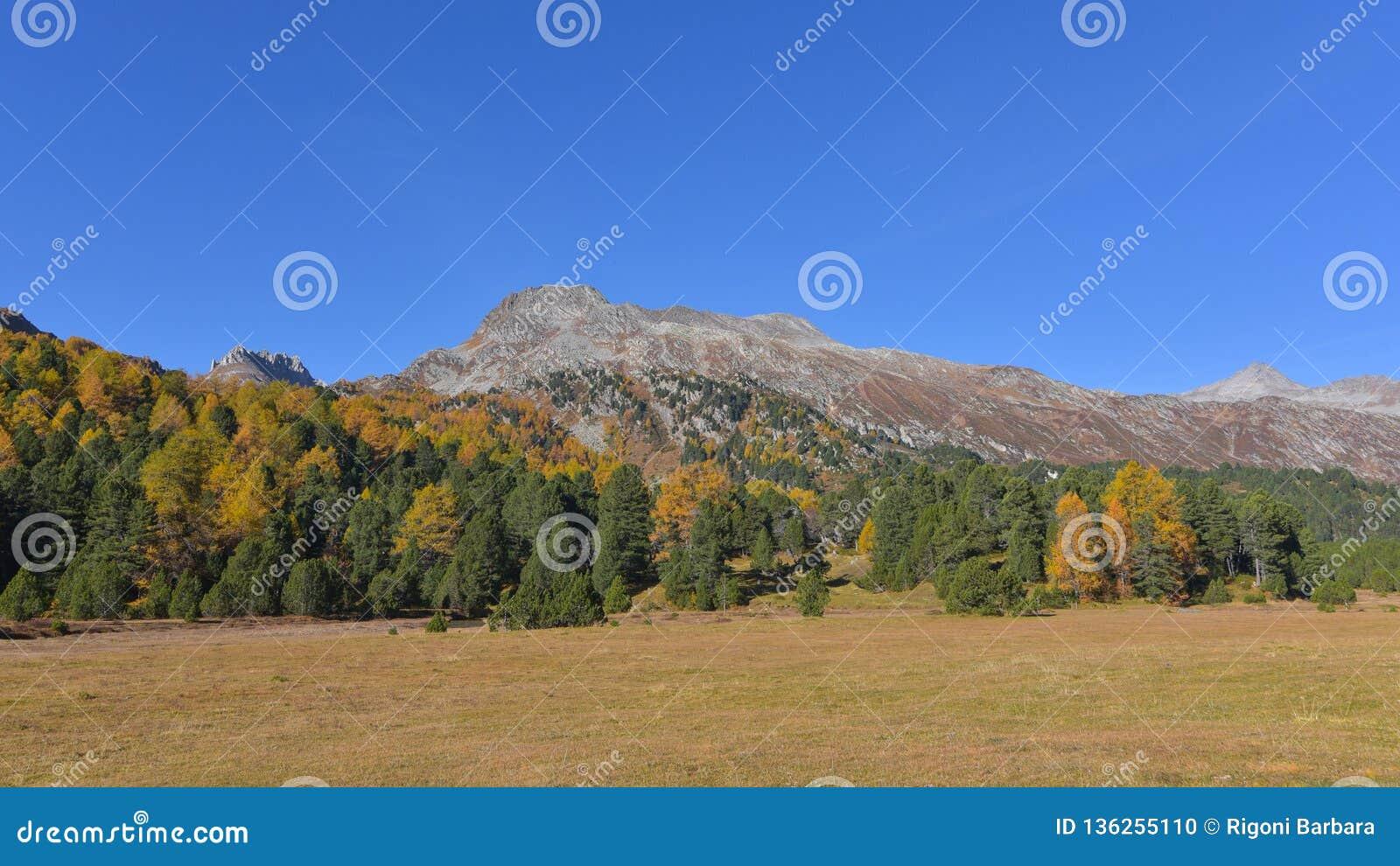 秋天克里米亚karadag横向山国家储备
