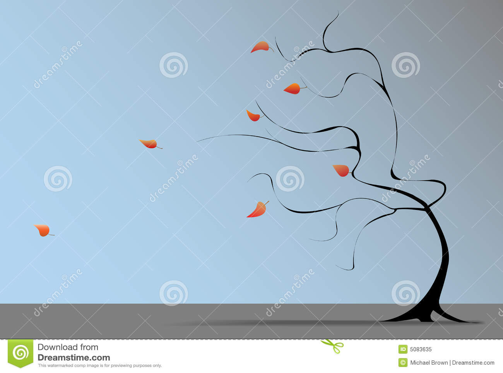 秋天吹动落叶子结构树风